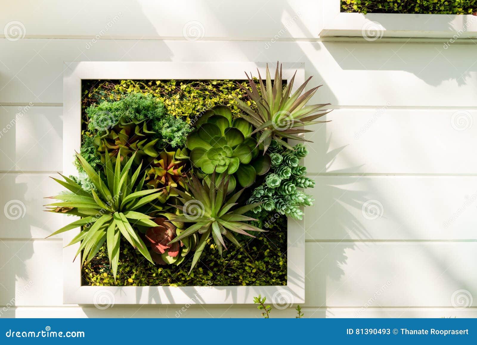 verzierter vertikaler garten der wand hintergrund stockbild bild 81390493. Black Bedroom Furniture Sets. Home Design Ideas