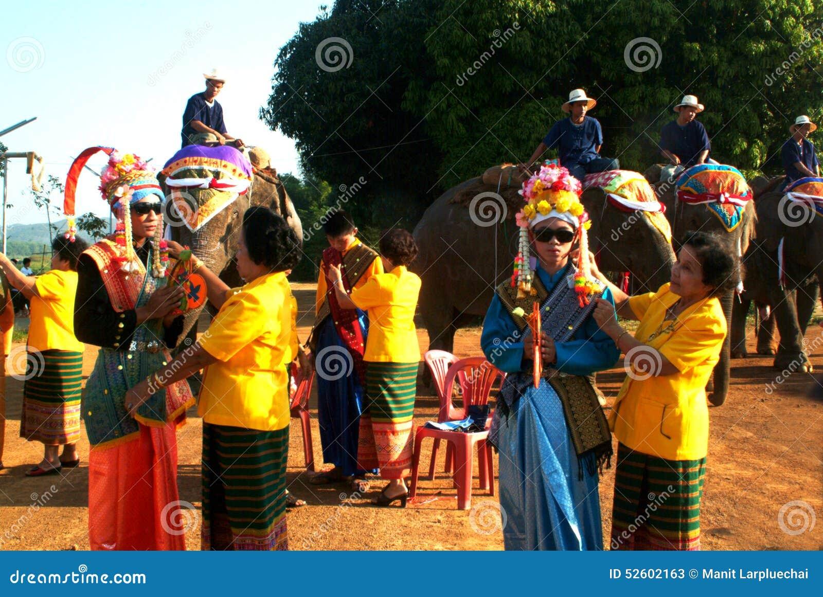 Vestito del principiante nella classificazione Proce della parte posteriore dell elefante di Satchanalai di si
