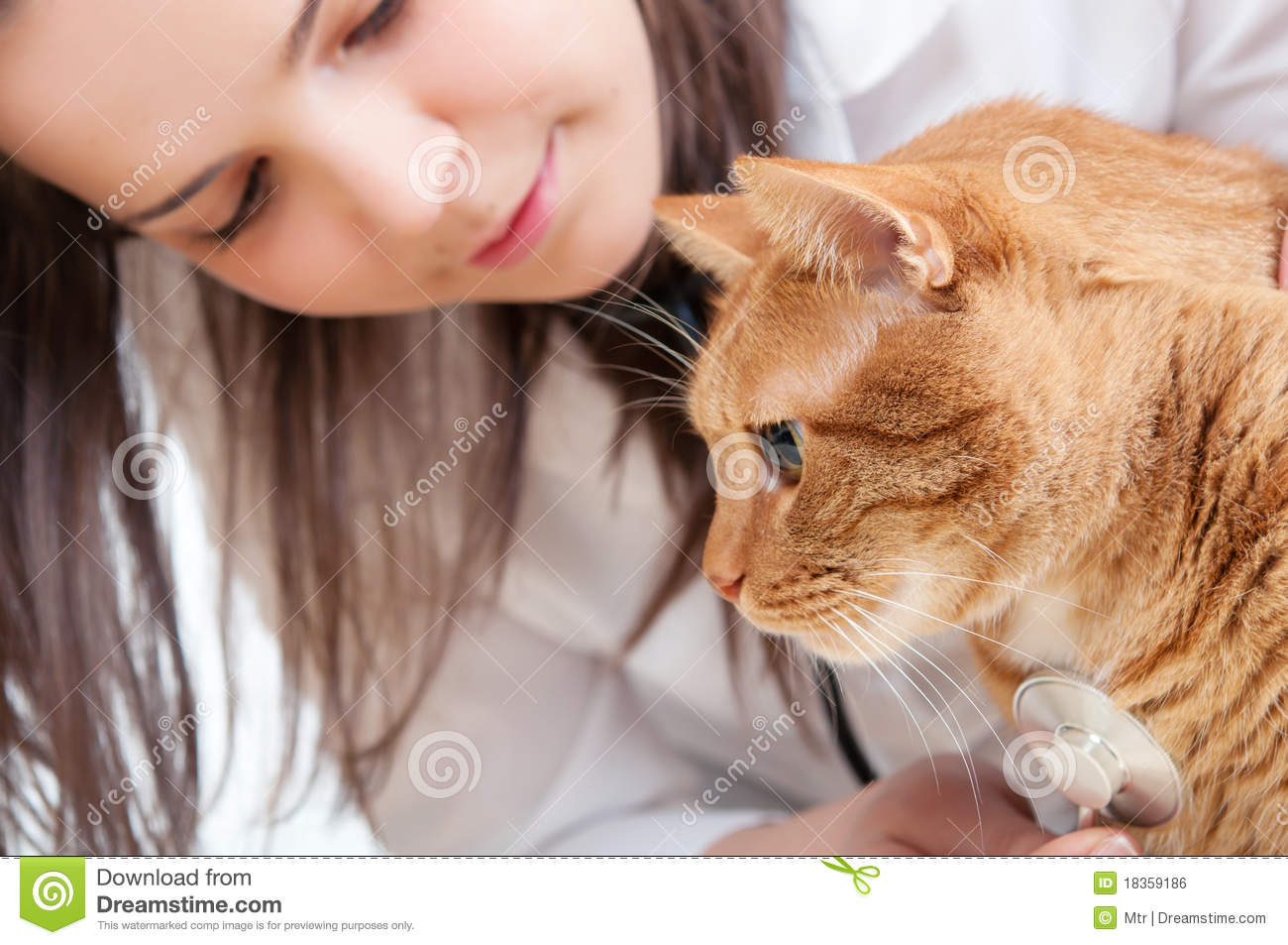 monthly pill for fleas on cats
