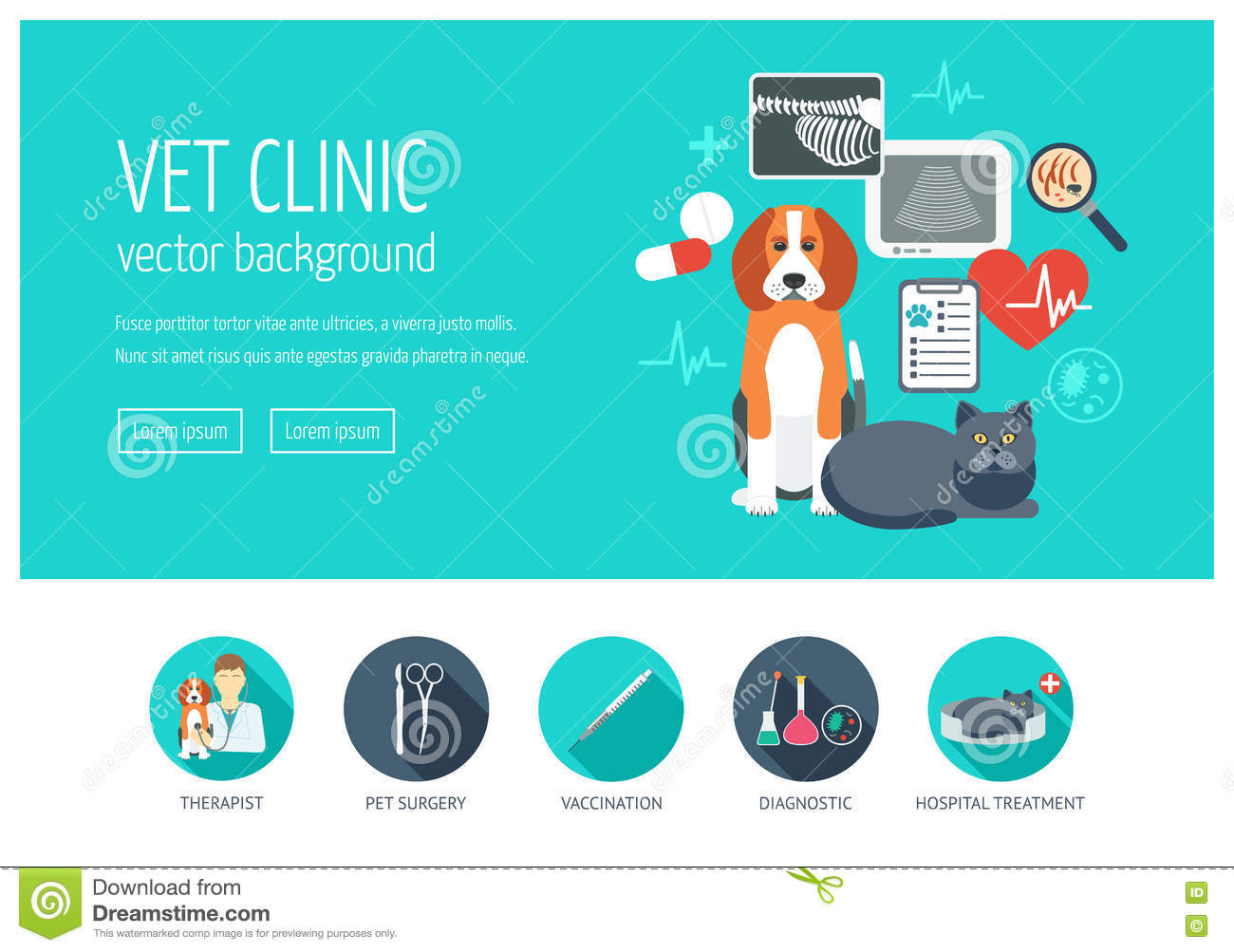 Dental Clinic Floor Plan Animal Website Template Banner And Infographic With Cat