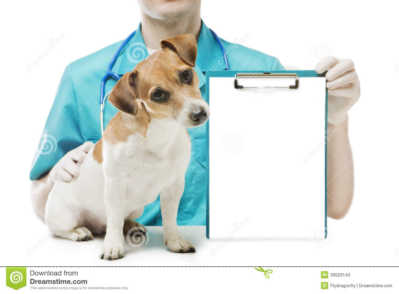 how to start a vet clinic