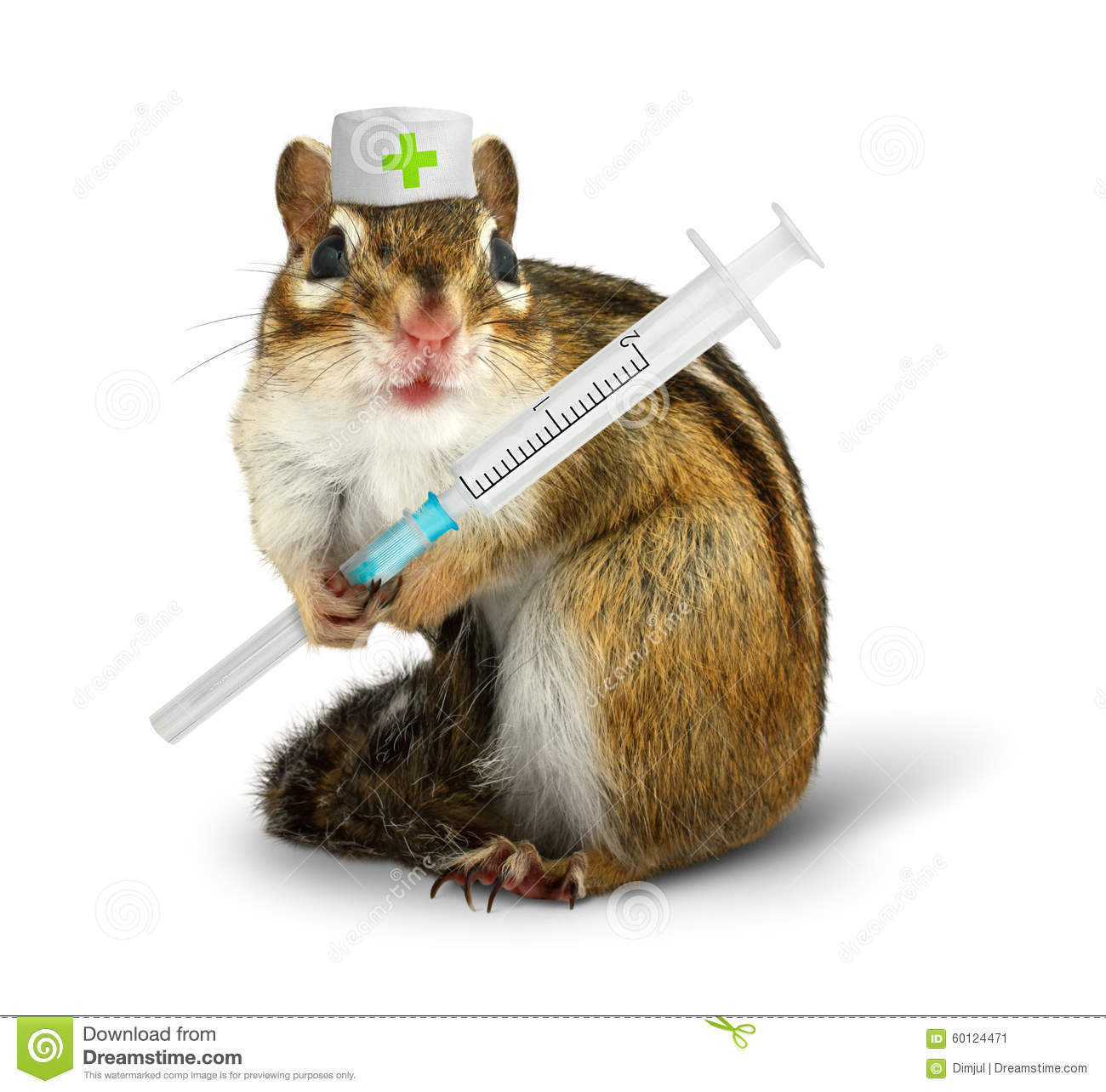 vet concept funny squirrel with syringe and doctor hat