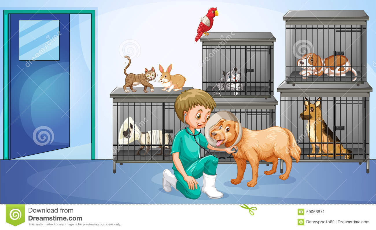 Vet And Many Animals In The Cage Stock Vector Image