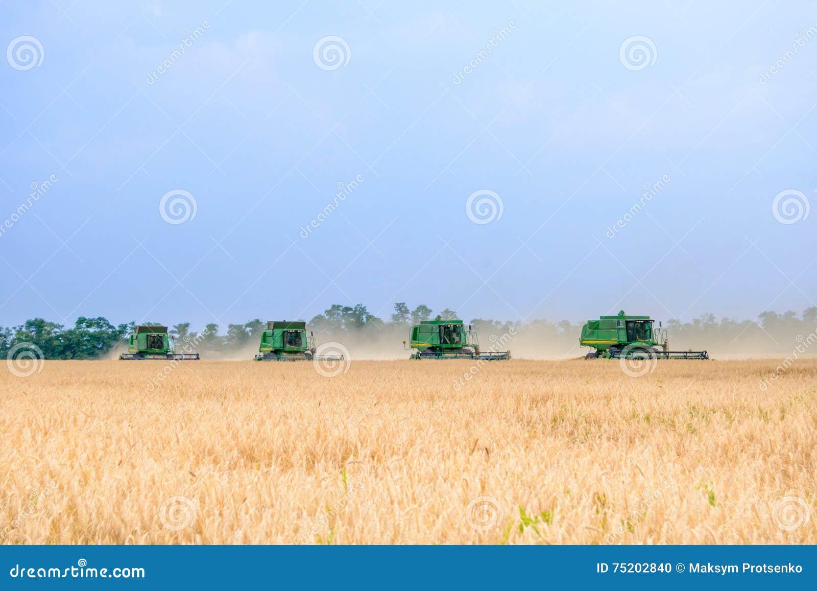 Vete för fyra John Deere Combine Harvesters Harvesting i fältet