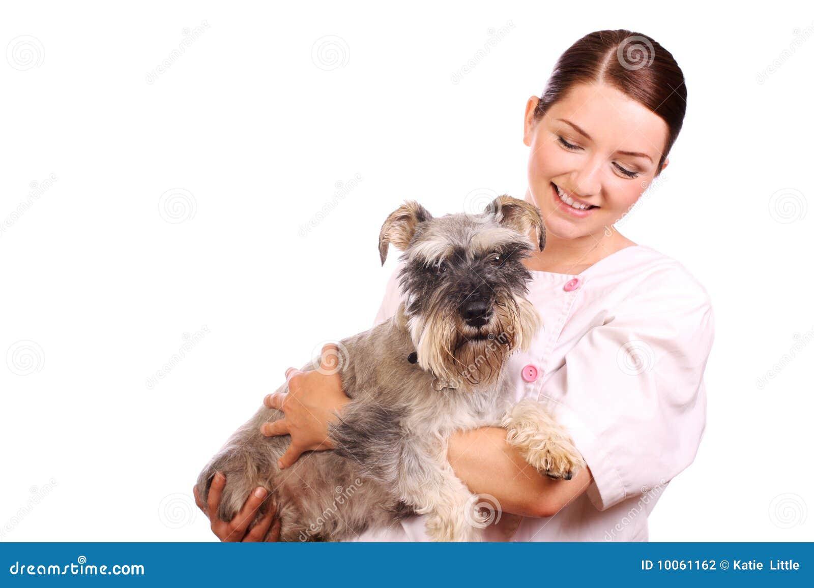 Veterinário que prende um cão e um sorriso