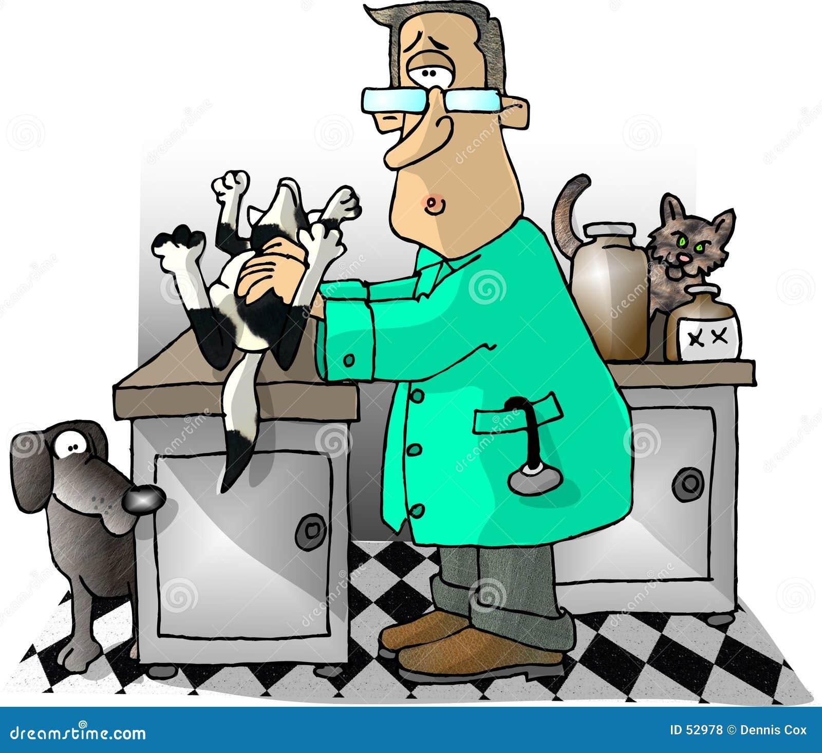 Veterinär