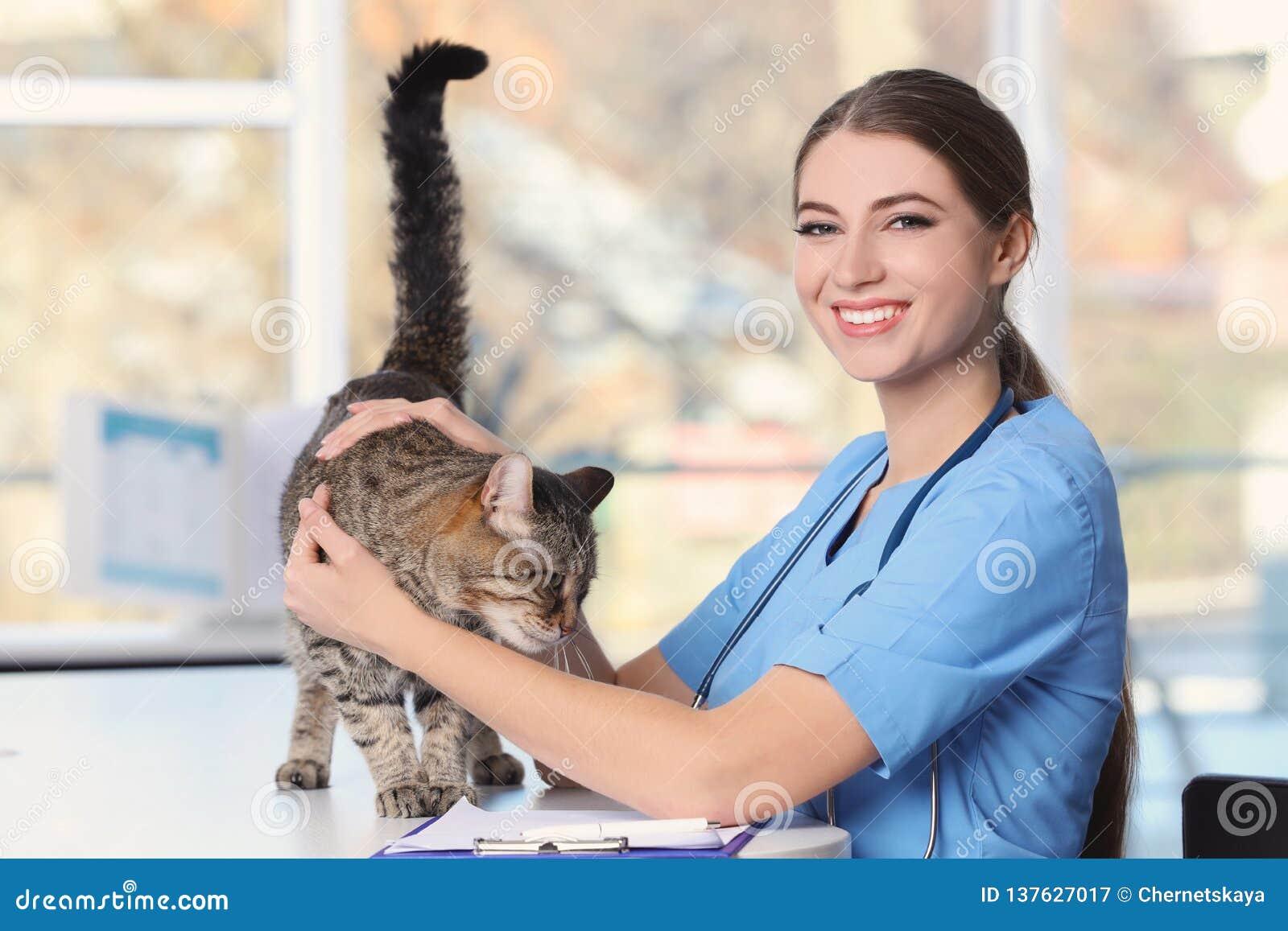 Veterinär doc med katten
