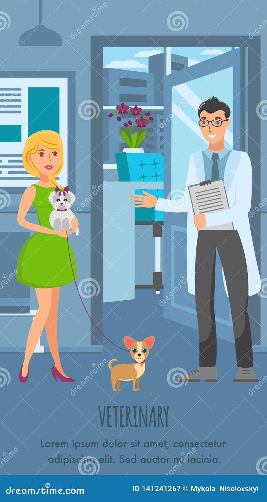Veterinär- mall för konsultationaffischvektor