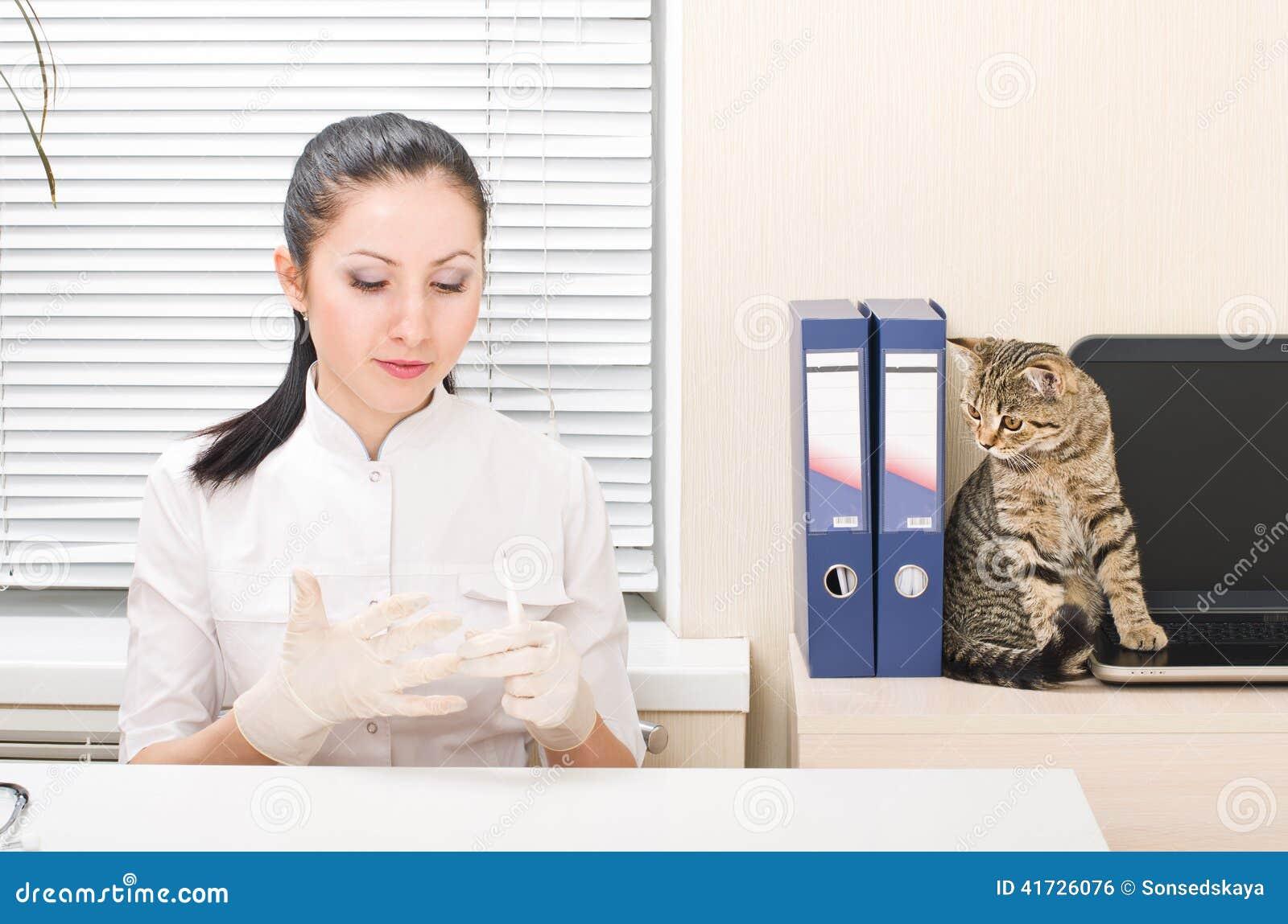 Veterinario y gato
