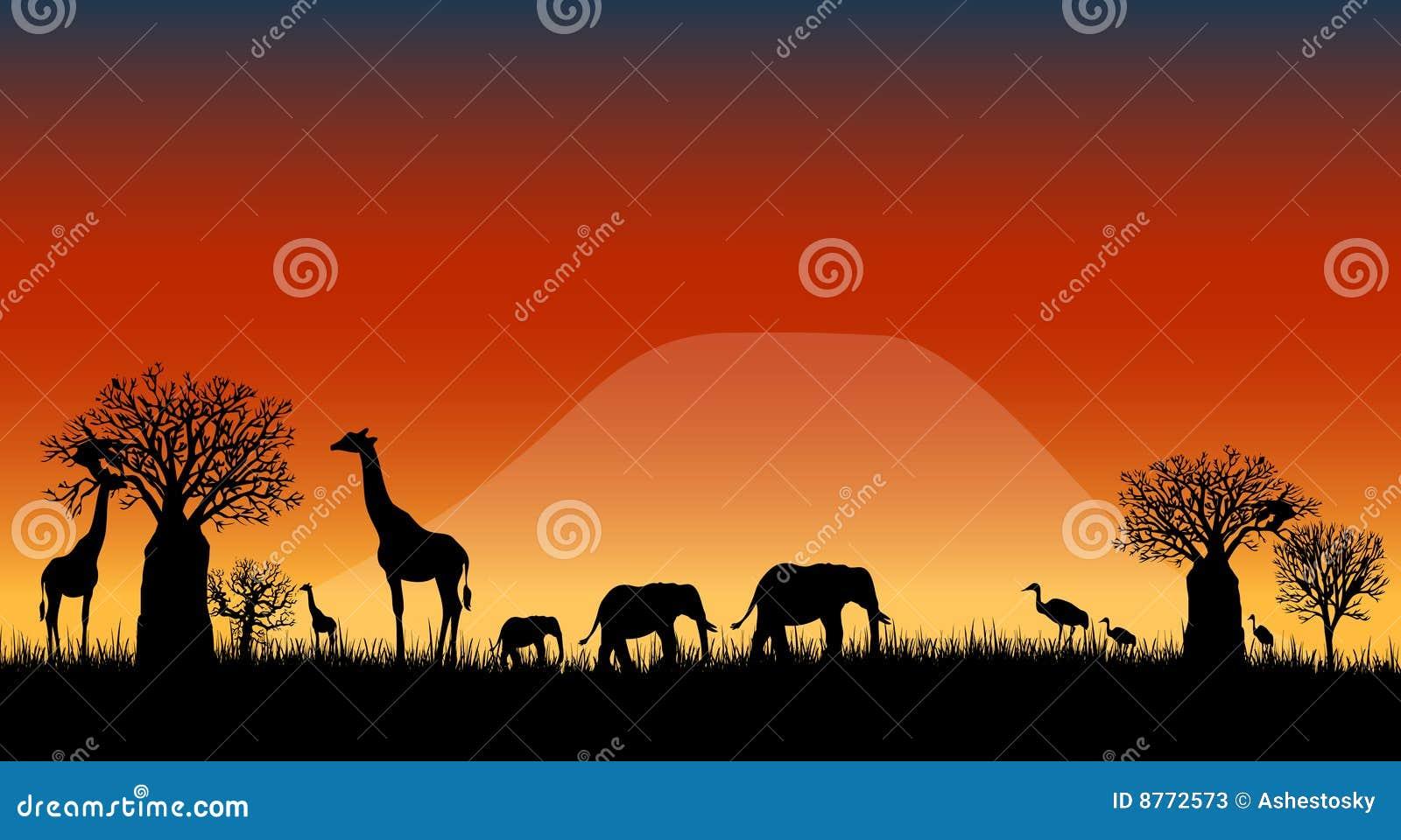 Vetor da paisagem do savanna de África