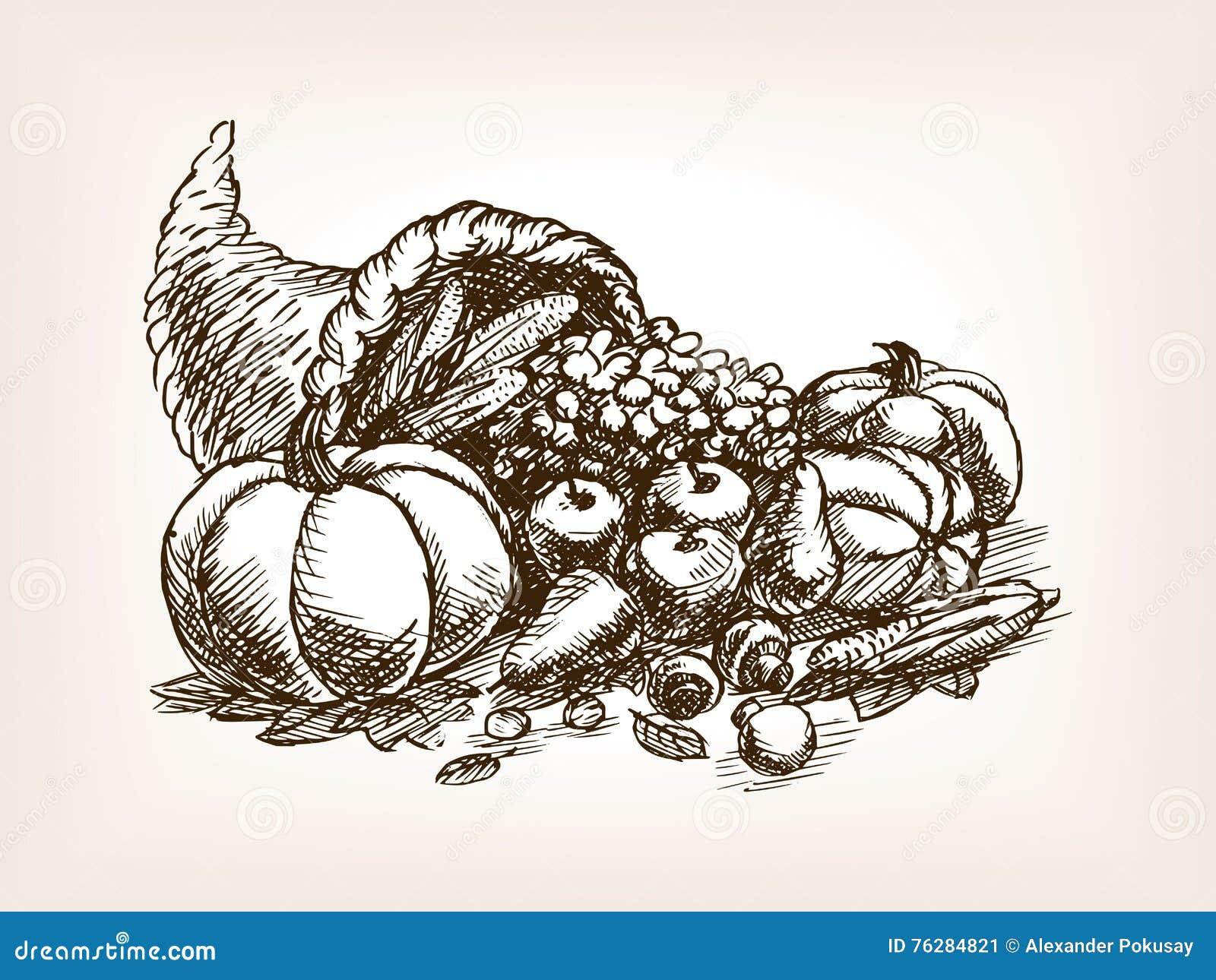 Vetor do estilo do esboço da colheita dos vegetais