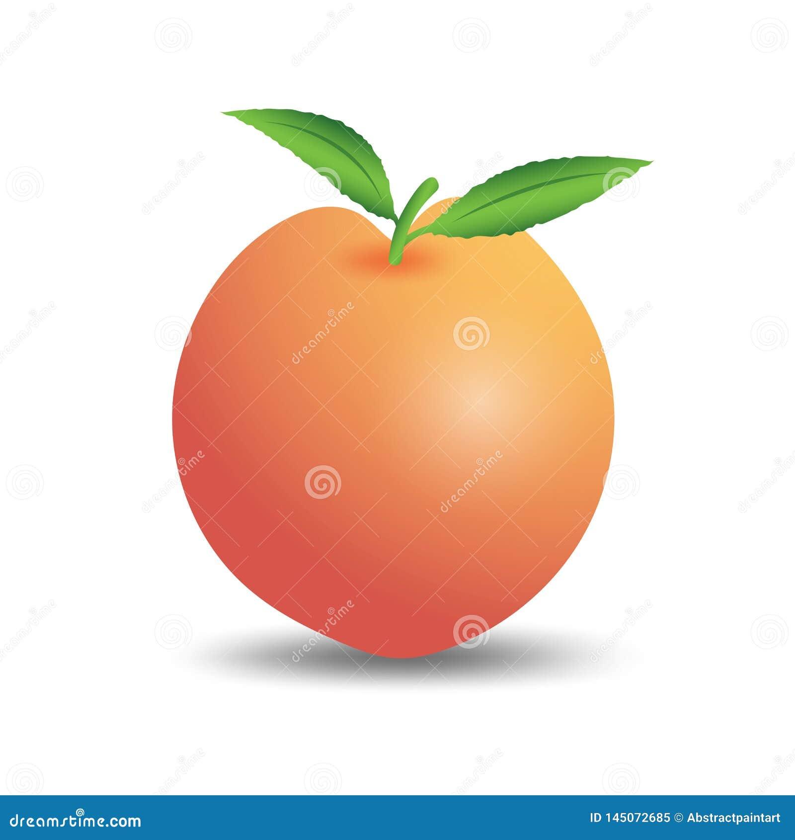 Vetor do fruto do pêssego, ícone da Web, sinal, elementos do projeto para o negócio