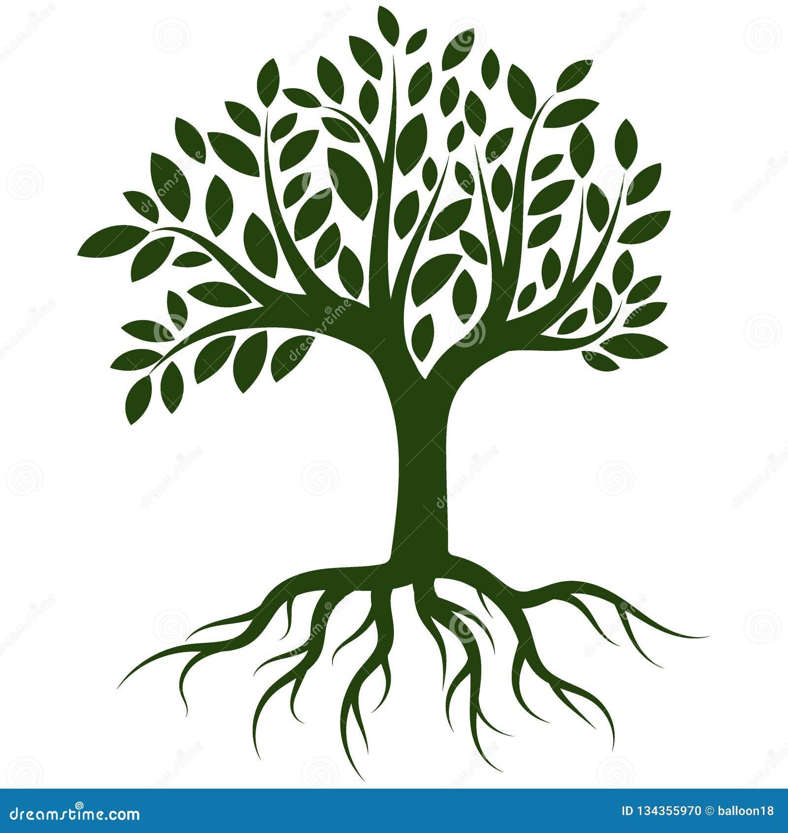 Vetor do logotipo das raizes da árvore
