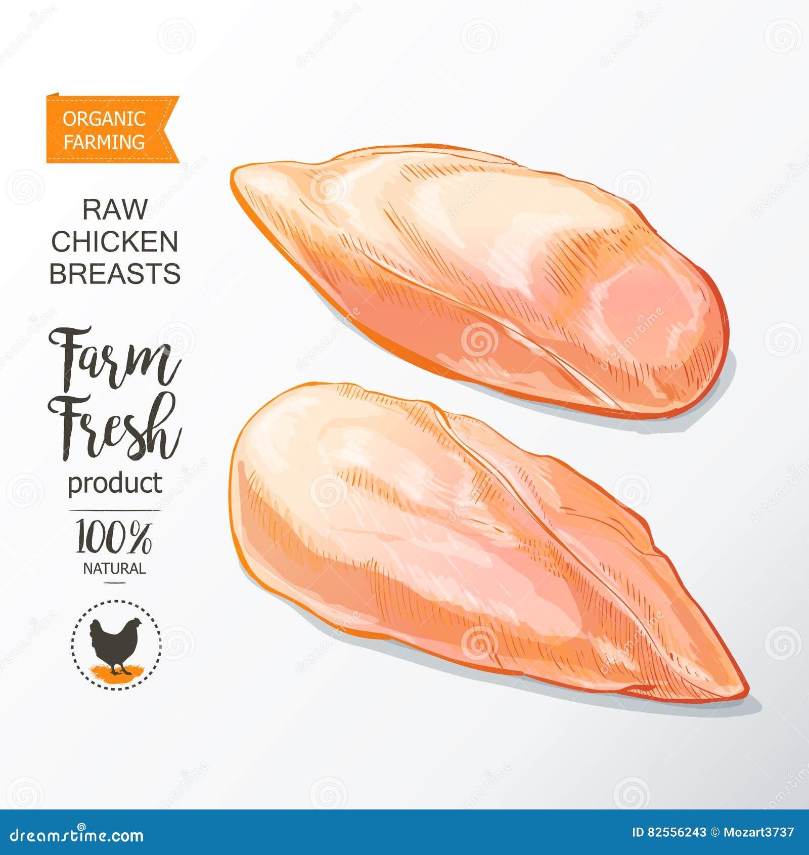 Vetor do peito de frango