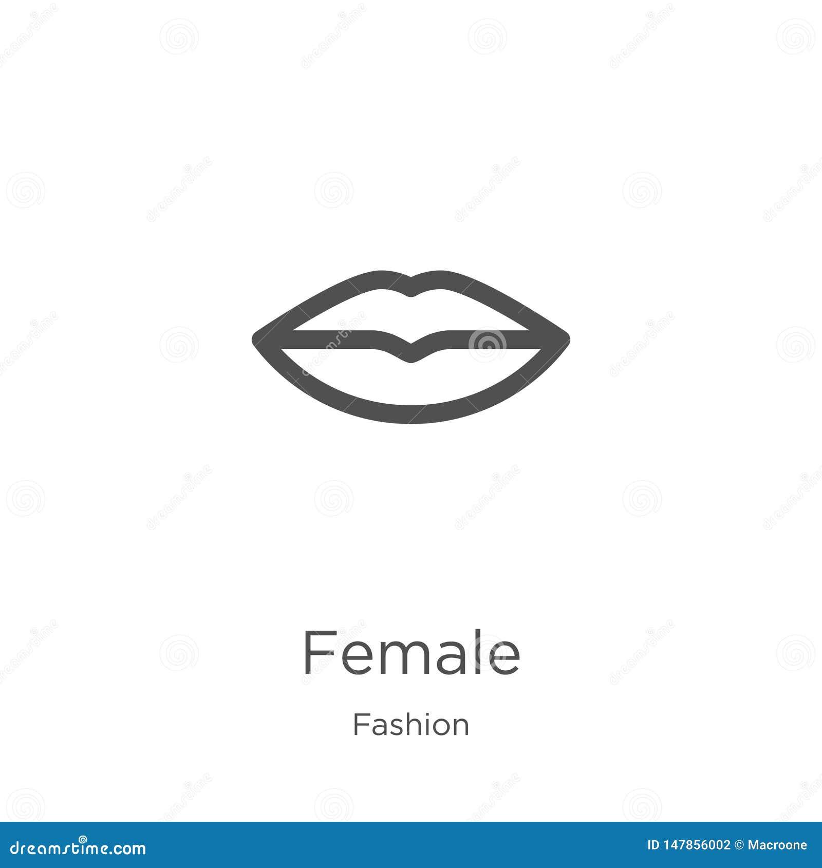 Vetor fêmea do ícone da coleção da forma Linha fina ilustra??o f?mea do vetor do ?cone do esbo?o Esbo?o, linha fina ?cone f?mea p