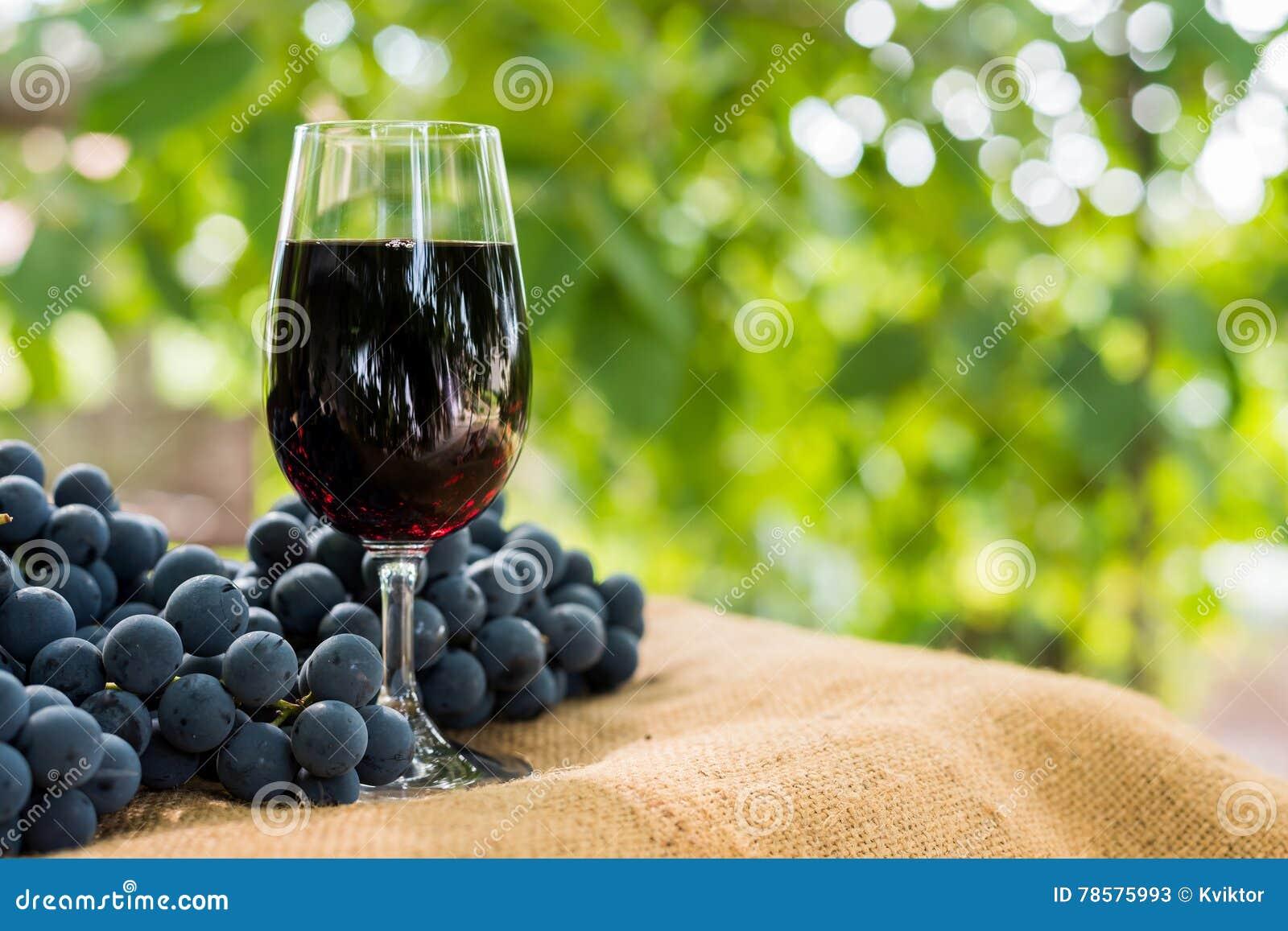 Vetro Del Vino Rosso E Mazzo Di Uva Contro Sfondo Naturale Verde