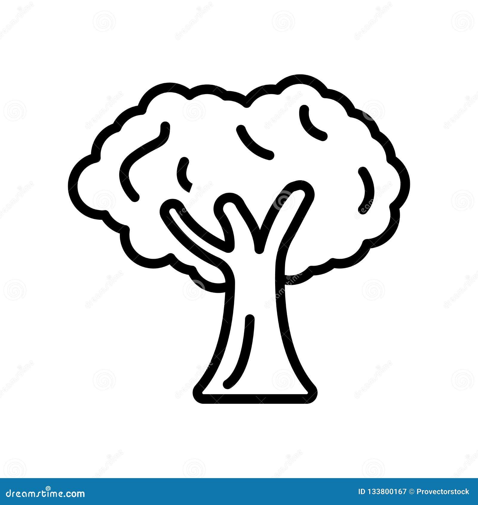 Vettore dell icona dell albero isolato su fondo bianco, segno dell albero, linea