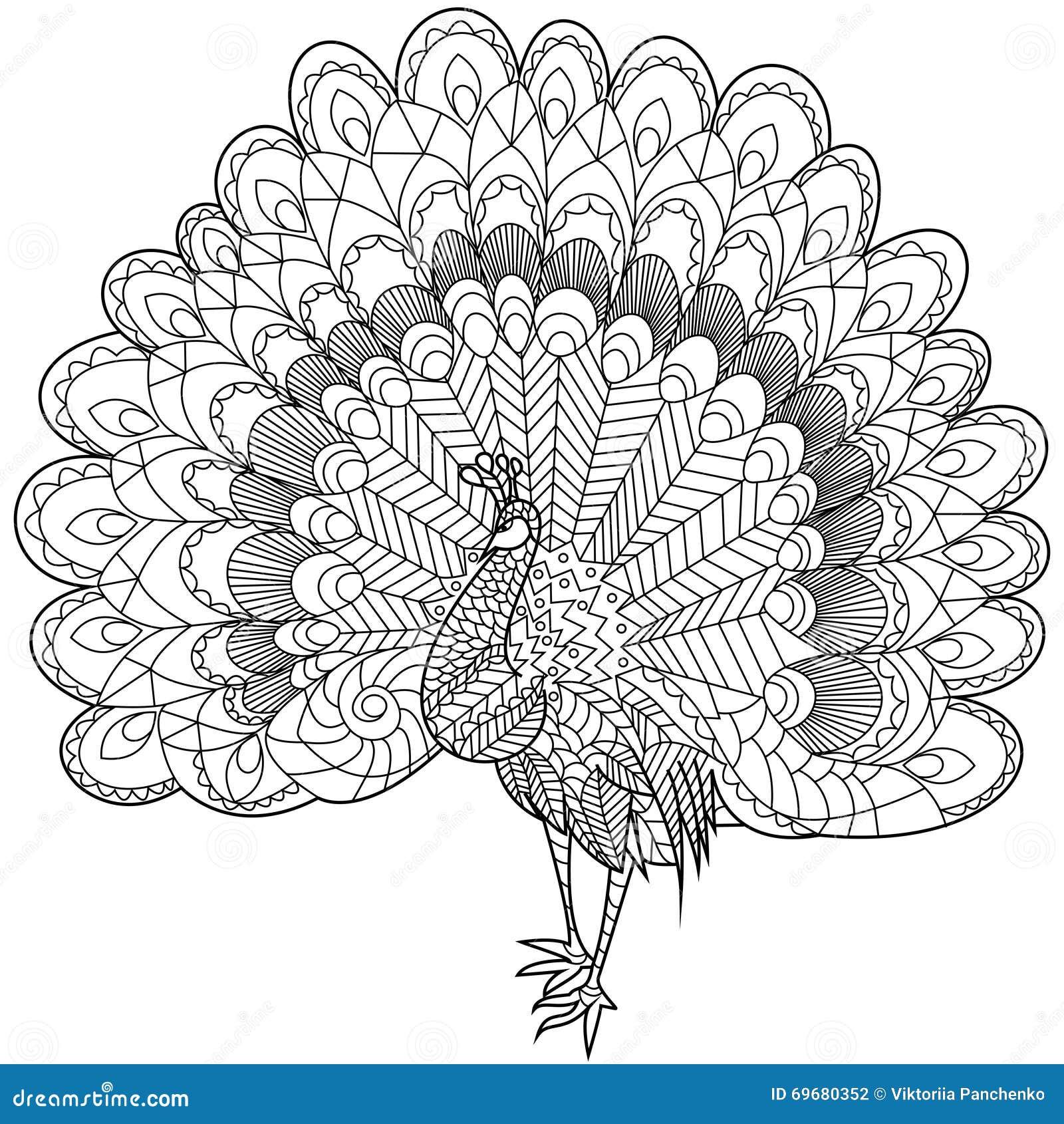 Vettore di coloritura del pavone per gli adulti - Dessin de paon ...