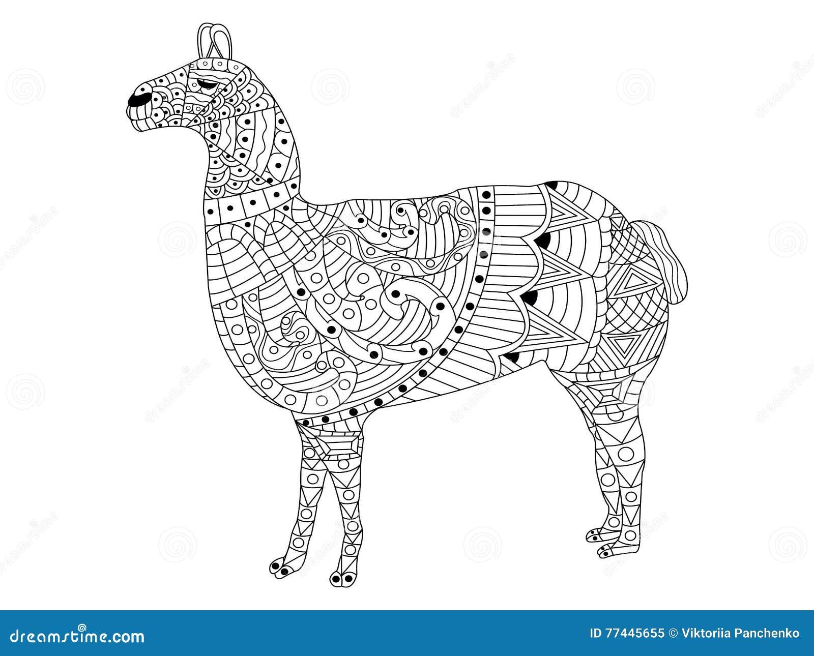 vettore di lama coloring per gli adulti illustrazione