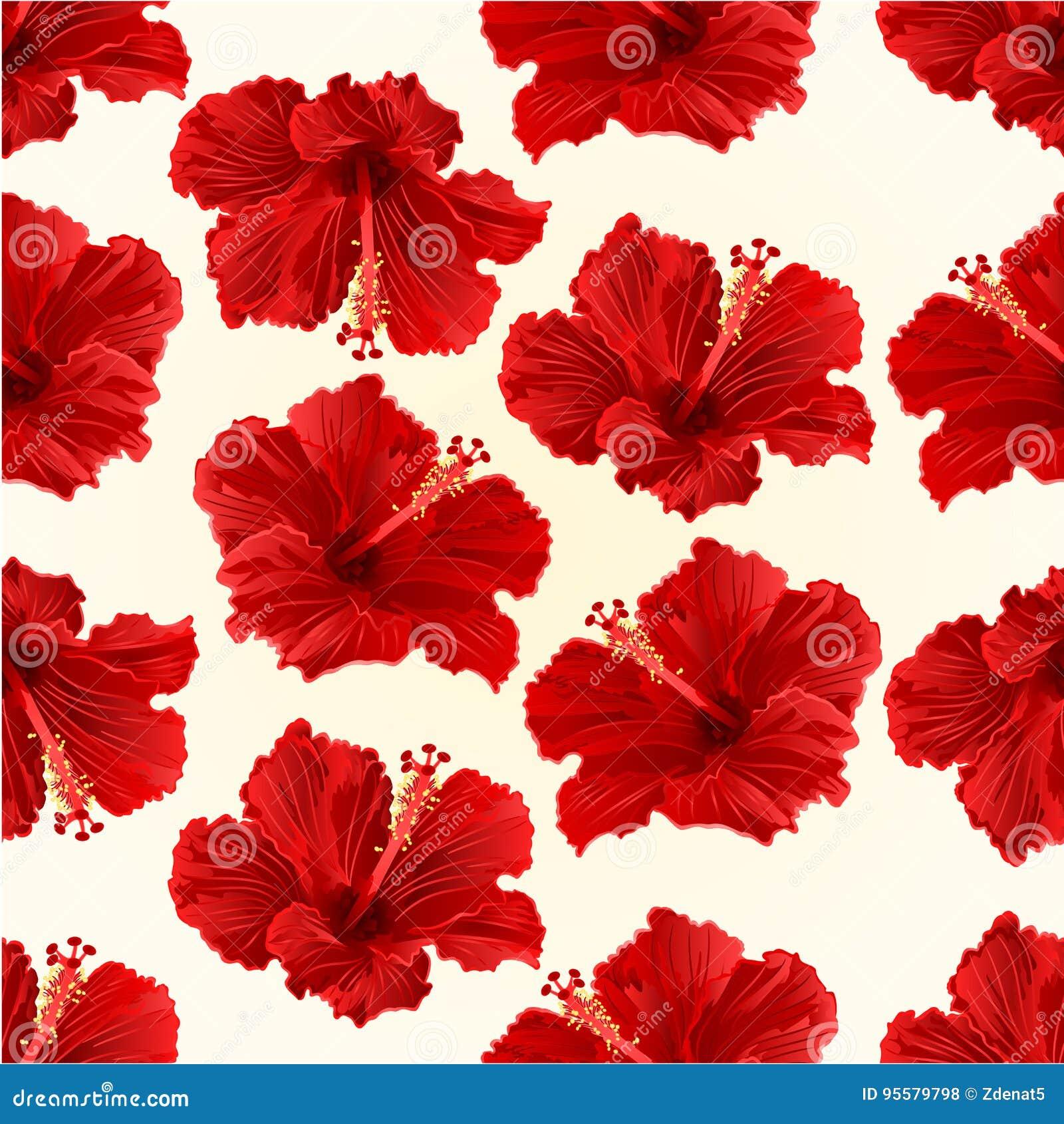 Vettore tropicale semplice dell annata del fiore dell ibisco rosso senza cuciture di struttura