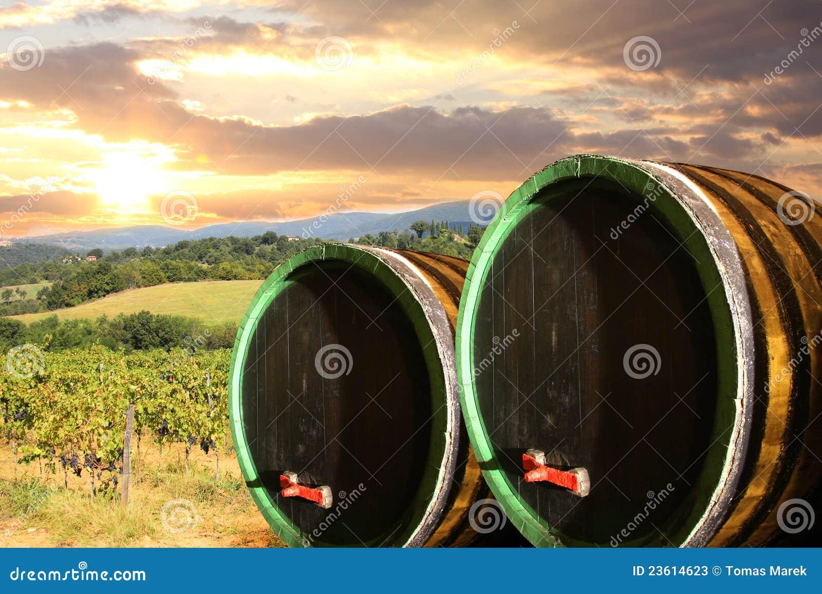 Viñedo con los barells en Chianti, Toscana del vino
