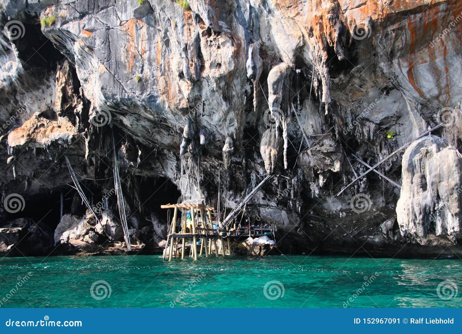 Viagem do barco em torno dos penhascos ásperos íngremes impressionantes da ilha tropical Ko Phi Phi, Tailândia