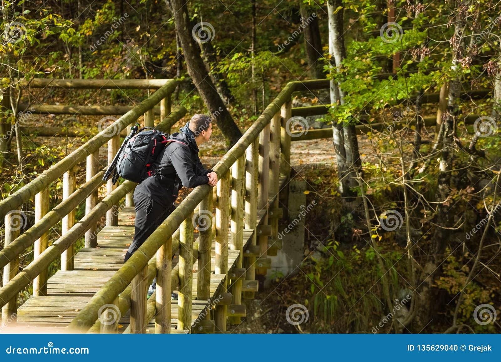 Viajante observando a natureza na ponte de madeira na floresta