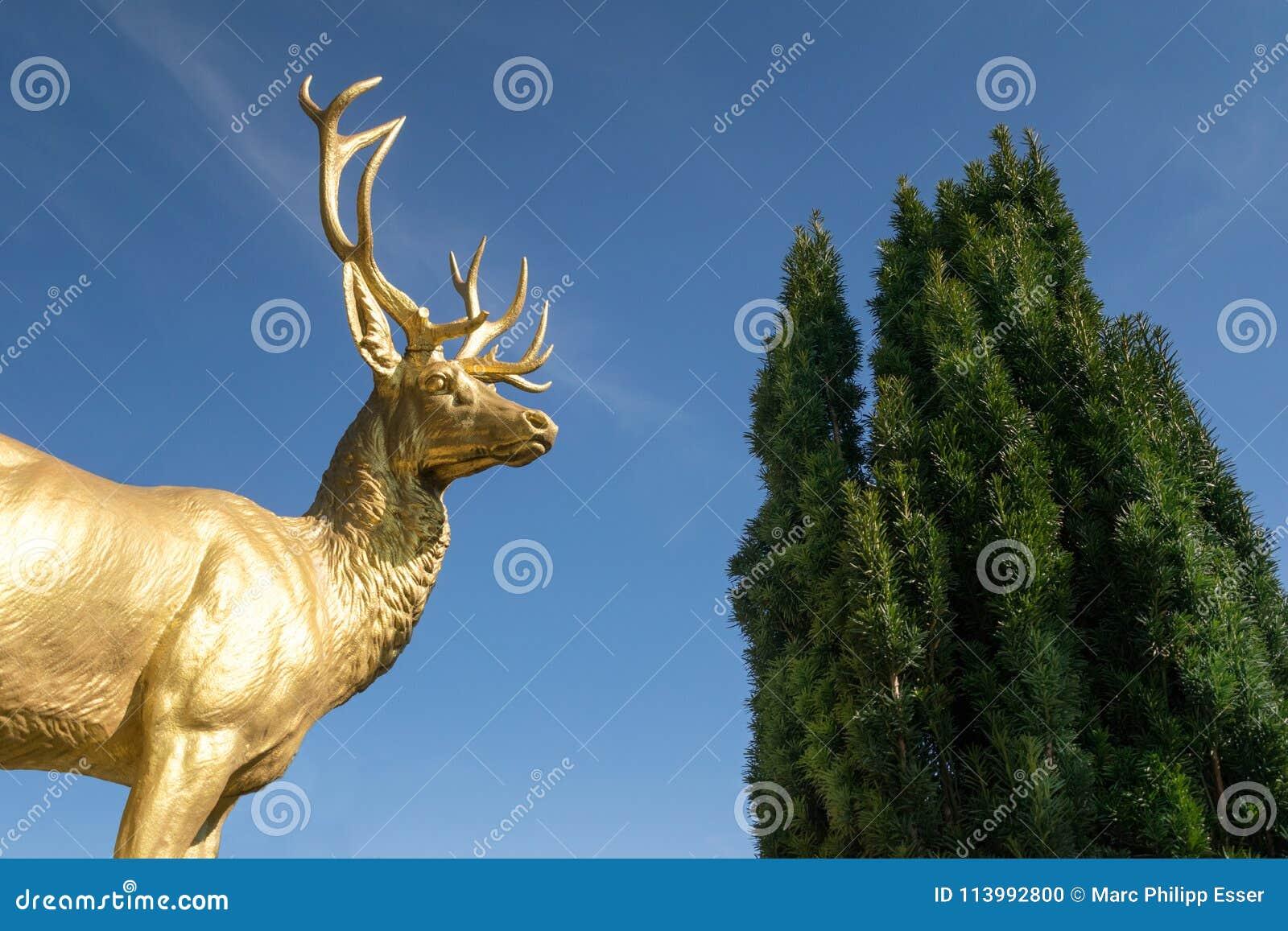 Viaje de oro del cielo azul de Bonn Alemania del castillo de Drachenburg de la estatua del macho