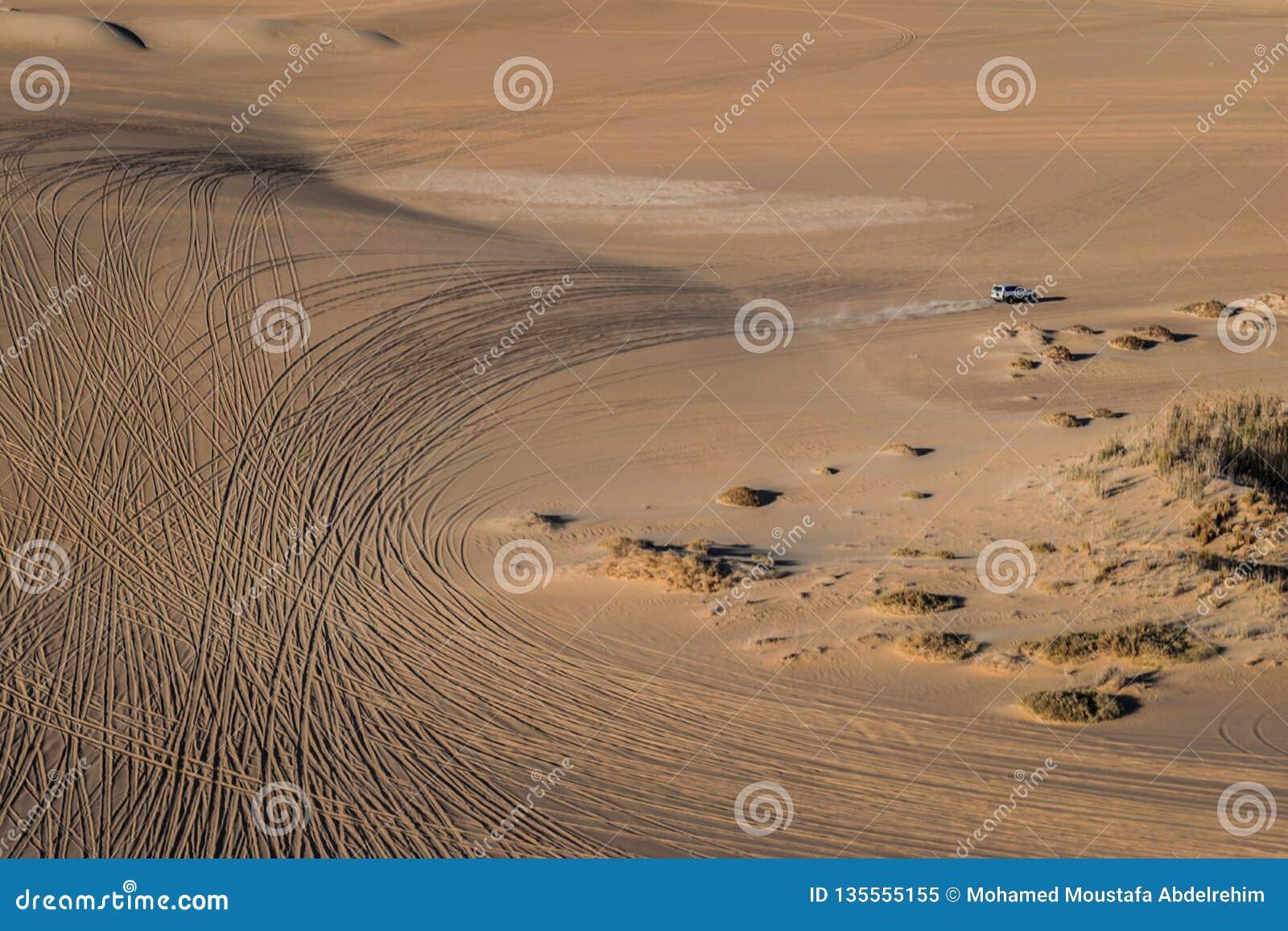 Viaje del safari en el desierto de Siwa, Egipto