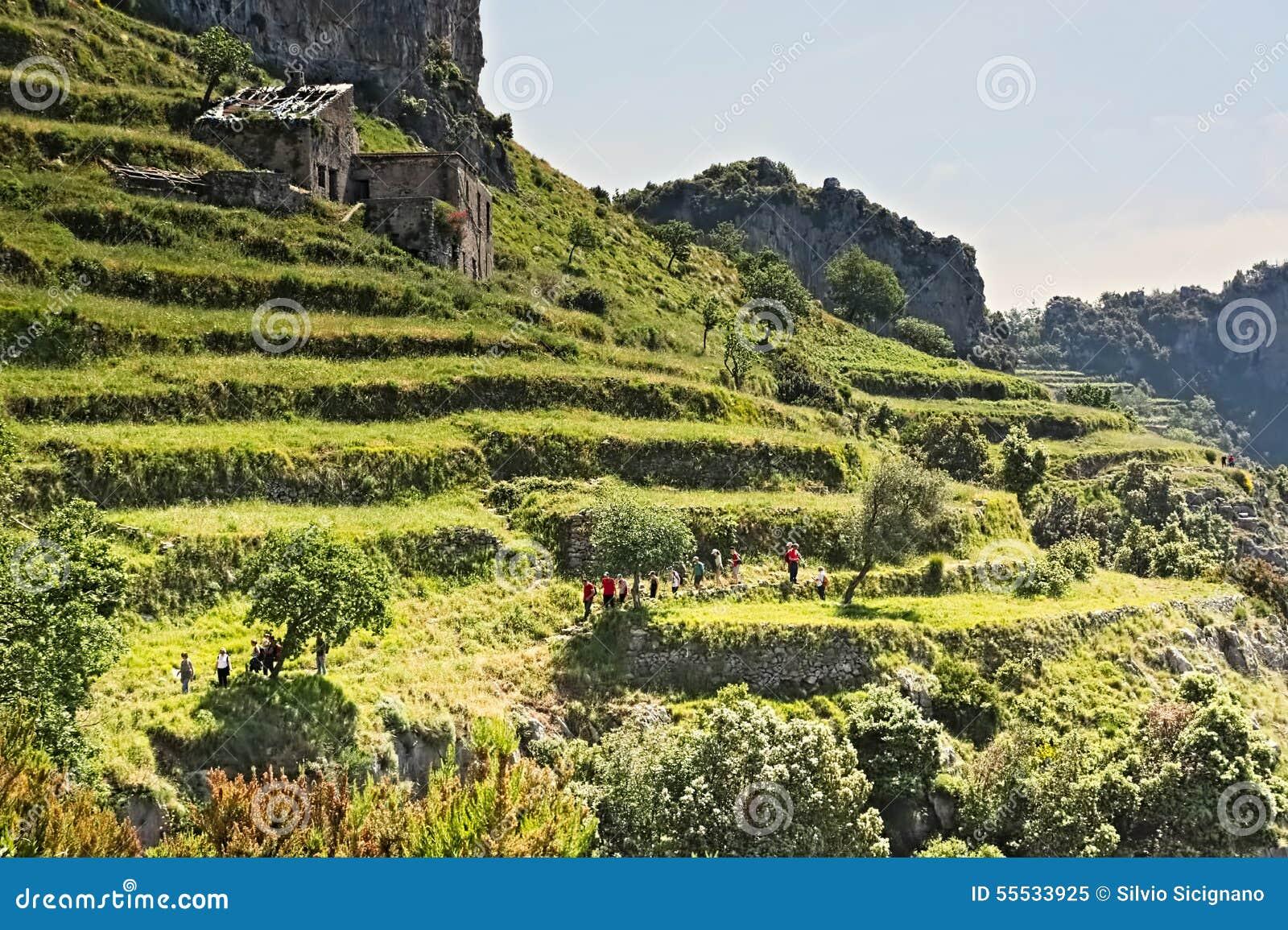 Viandante, trekker, percorso, dei, costa di Amalfi, camminante, terrazzi