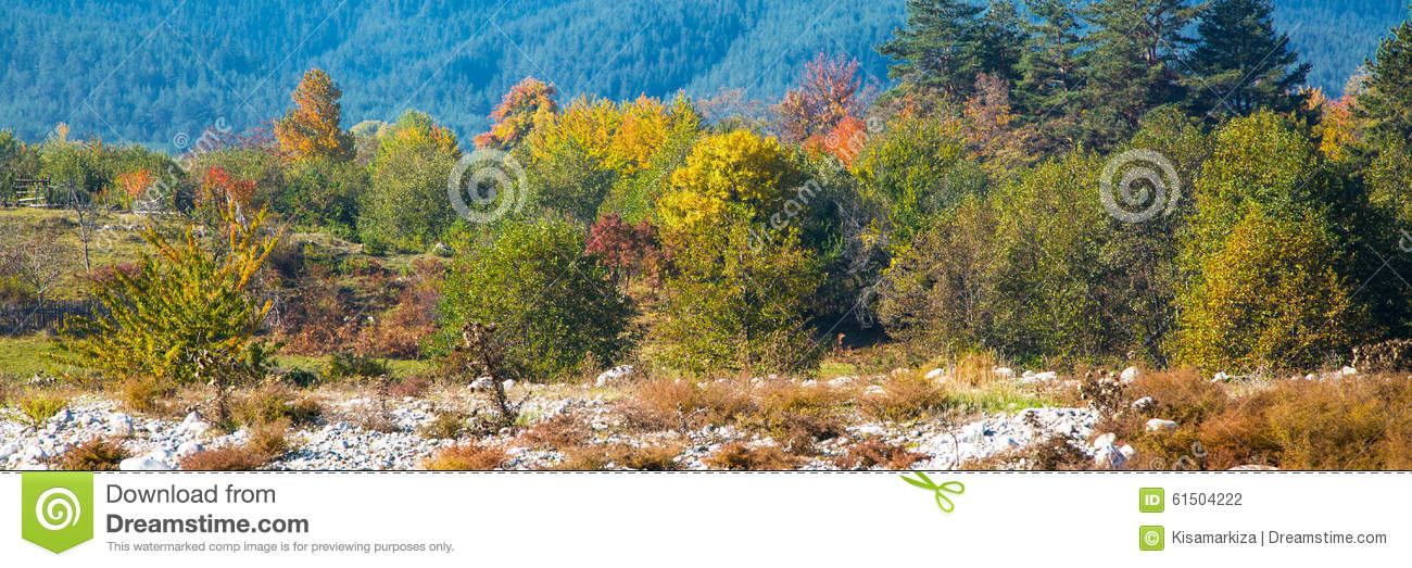 Vibrant autumn panorama background with colorful