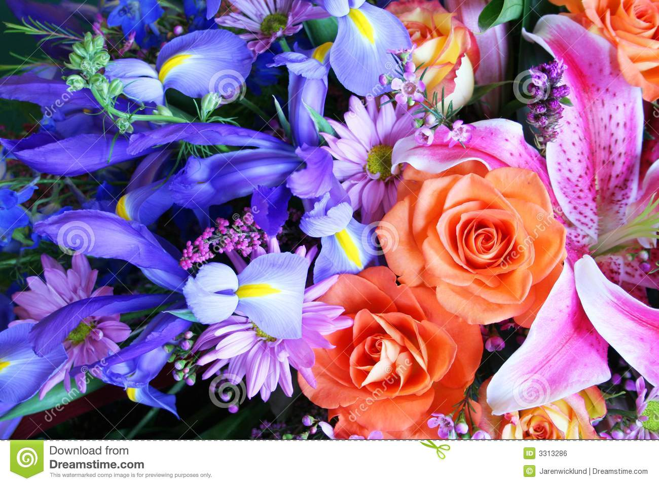 Vibrant Bouquet Of Flowers Stock Photo Image Of Iris 3313286