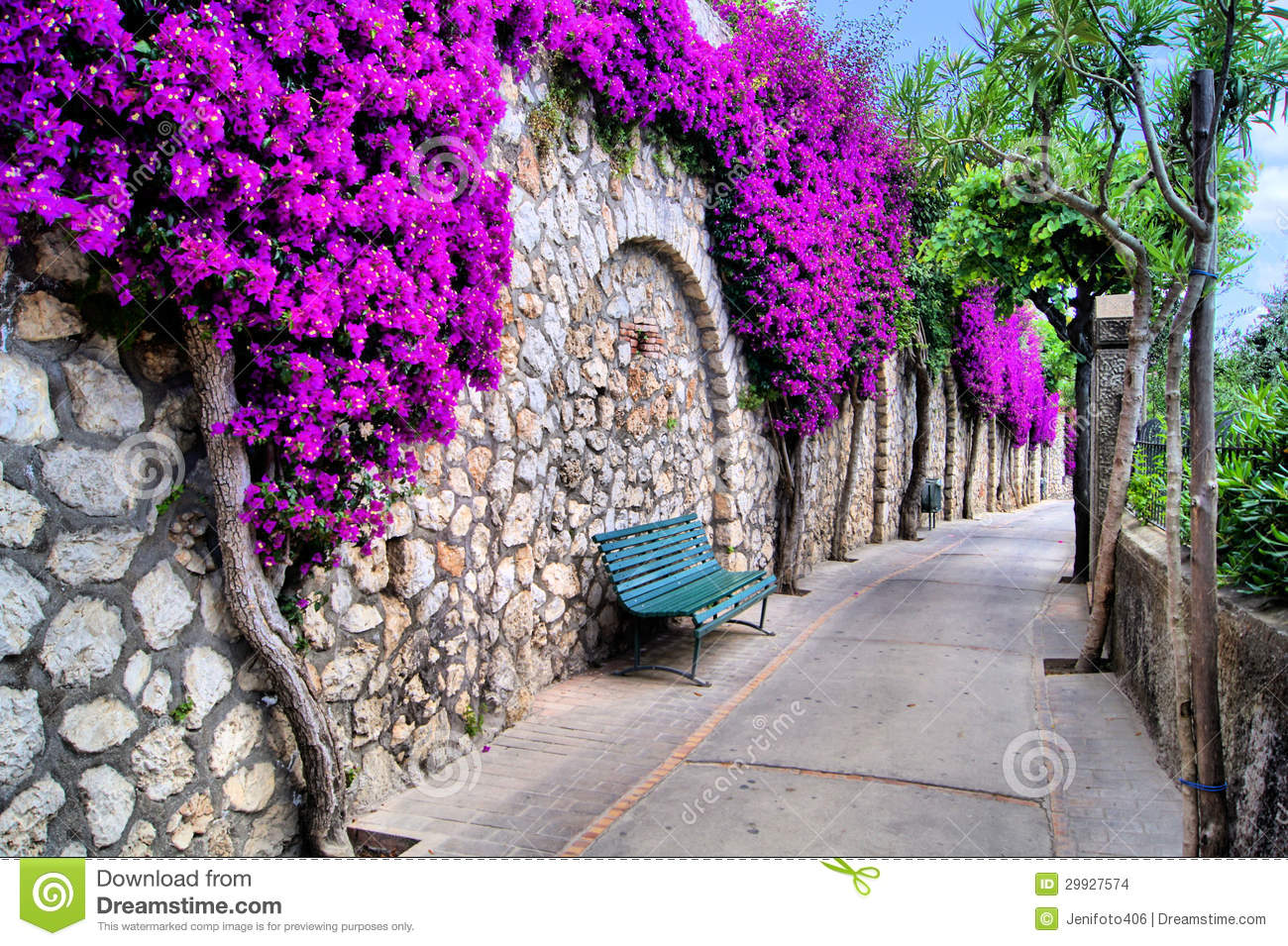 Flower Lined Path Stock Photo Image Of South