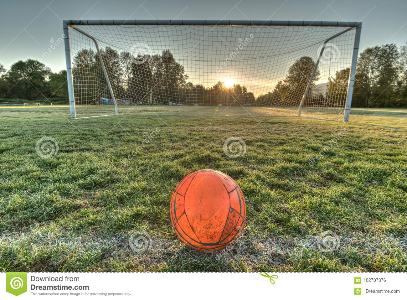 Vibrant Soccer Ball Centered In Front Of Soccer Goal At