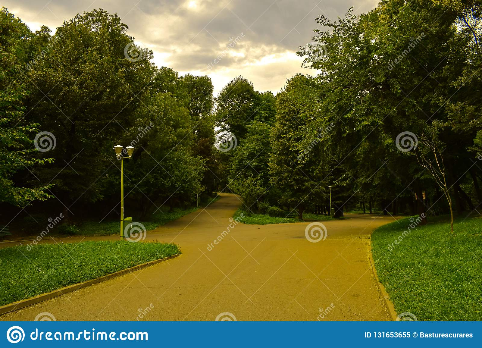 Vicoli del parco della città un giorno nuvoloso Foresta verde