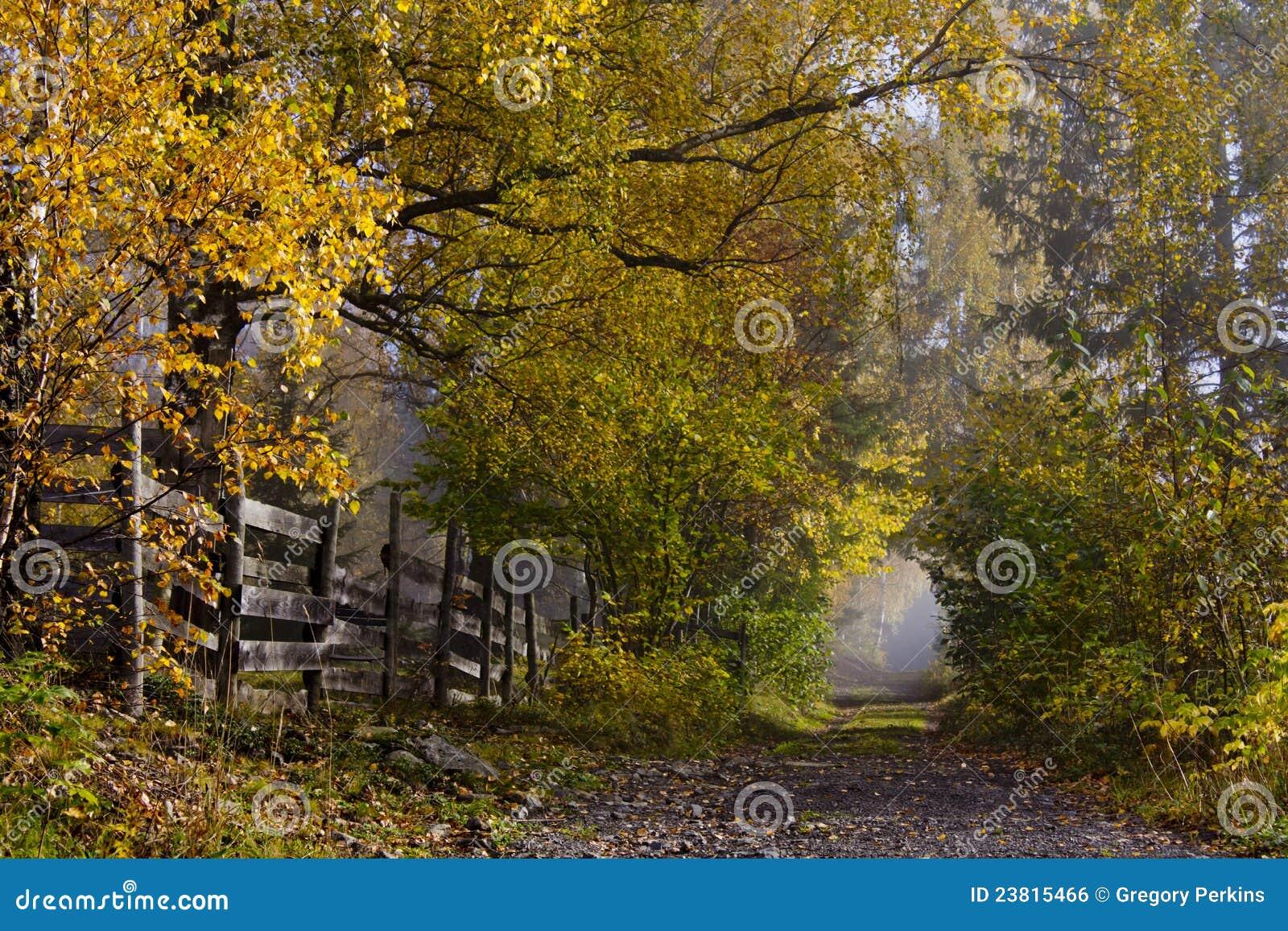 Vicolo del paese con gli alberi a foglie caduche nei colori di autunno