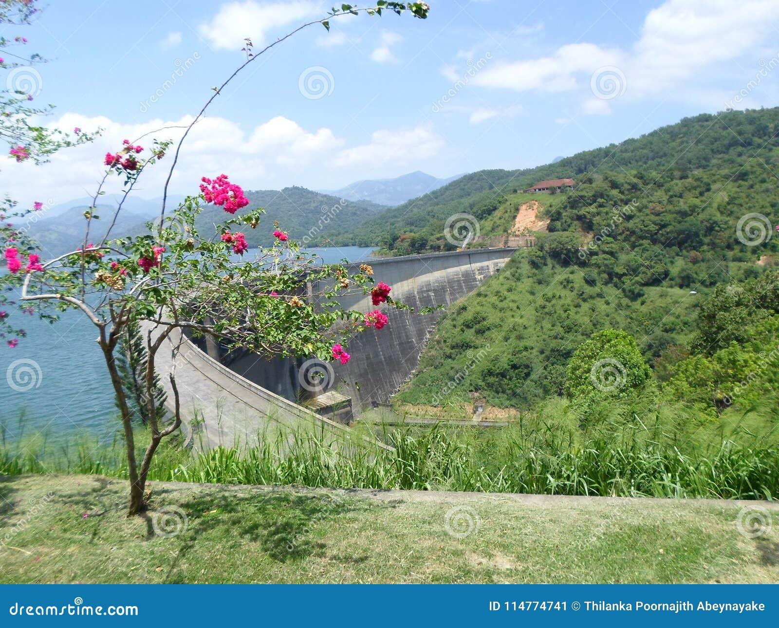 Victoria-dam Sri Lanka