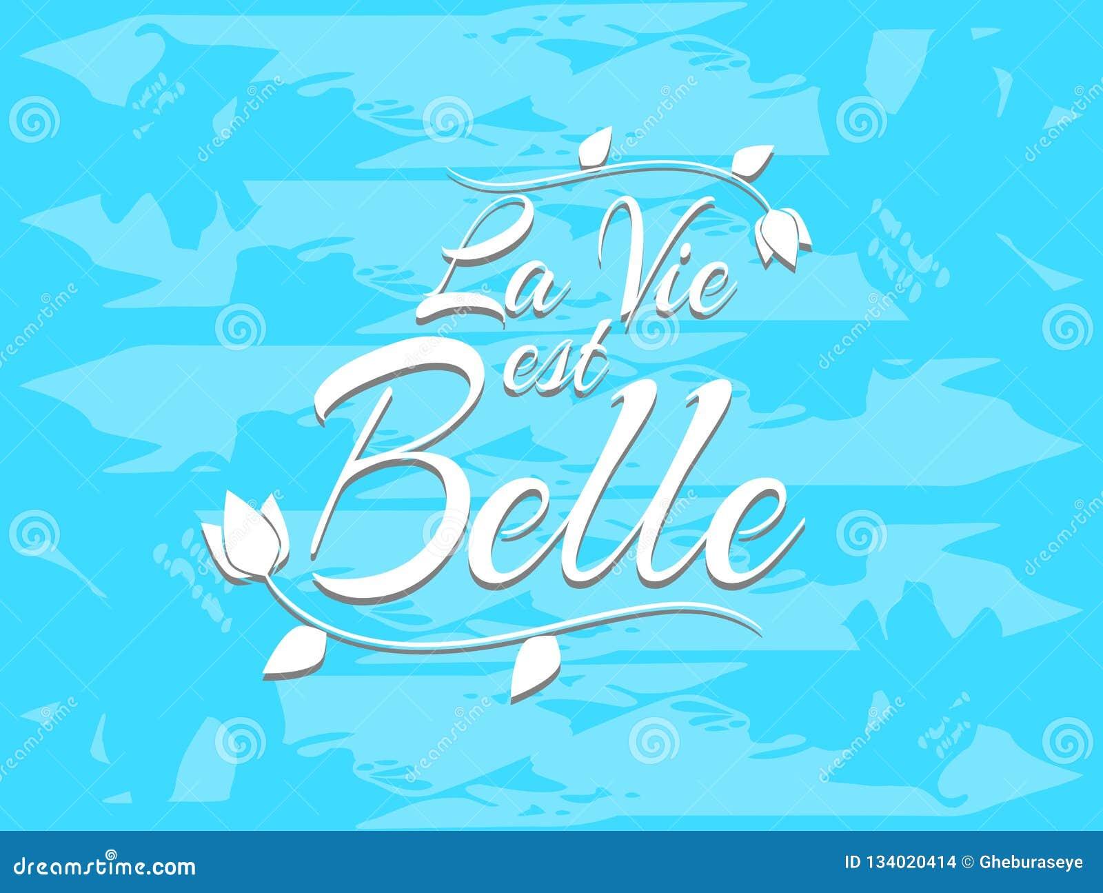 A Vida Da Frase é Bonita Em Francês Ilustração Stock Ilustração De