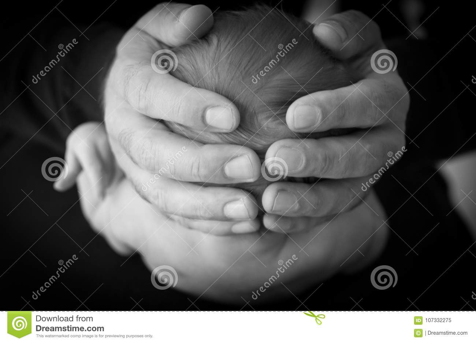 Vida-entre las manos