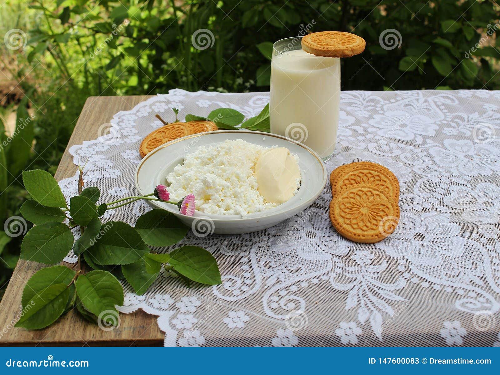 Vida imóvel com coalho e cookies de leite