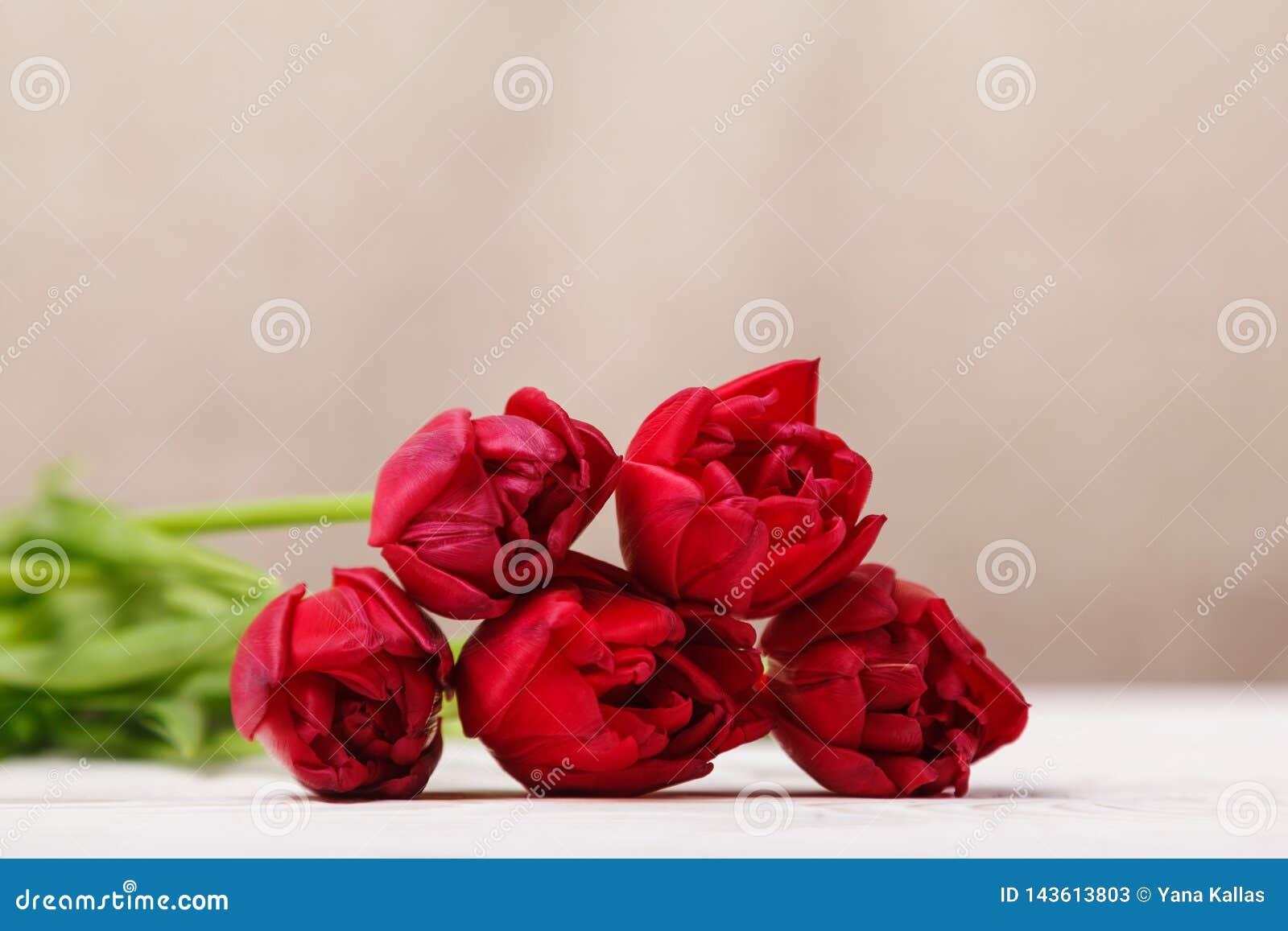 Vida inmóvil del vintage con un ramo de la primavera de tulipanes El concepto del día de madre, el día de las mujeres Adorne el h