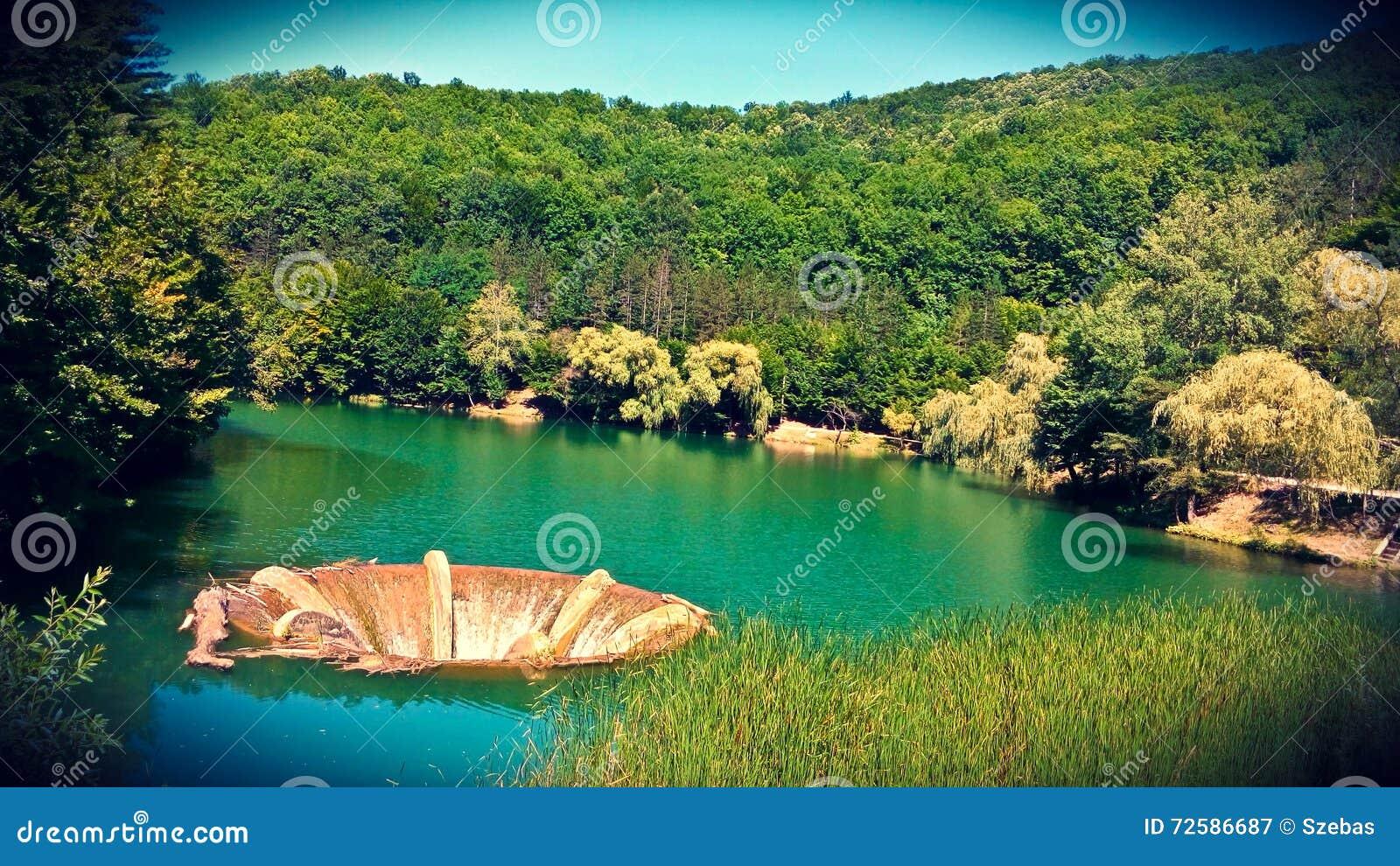 Vida Lake Bihor County Romania