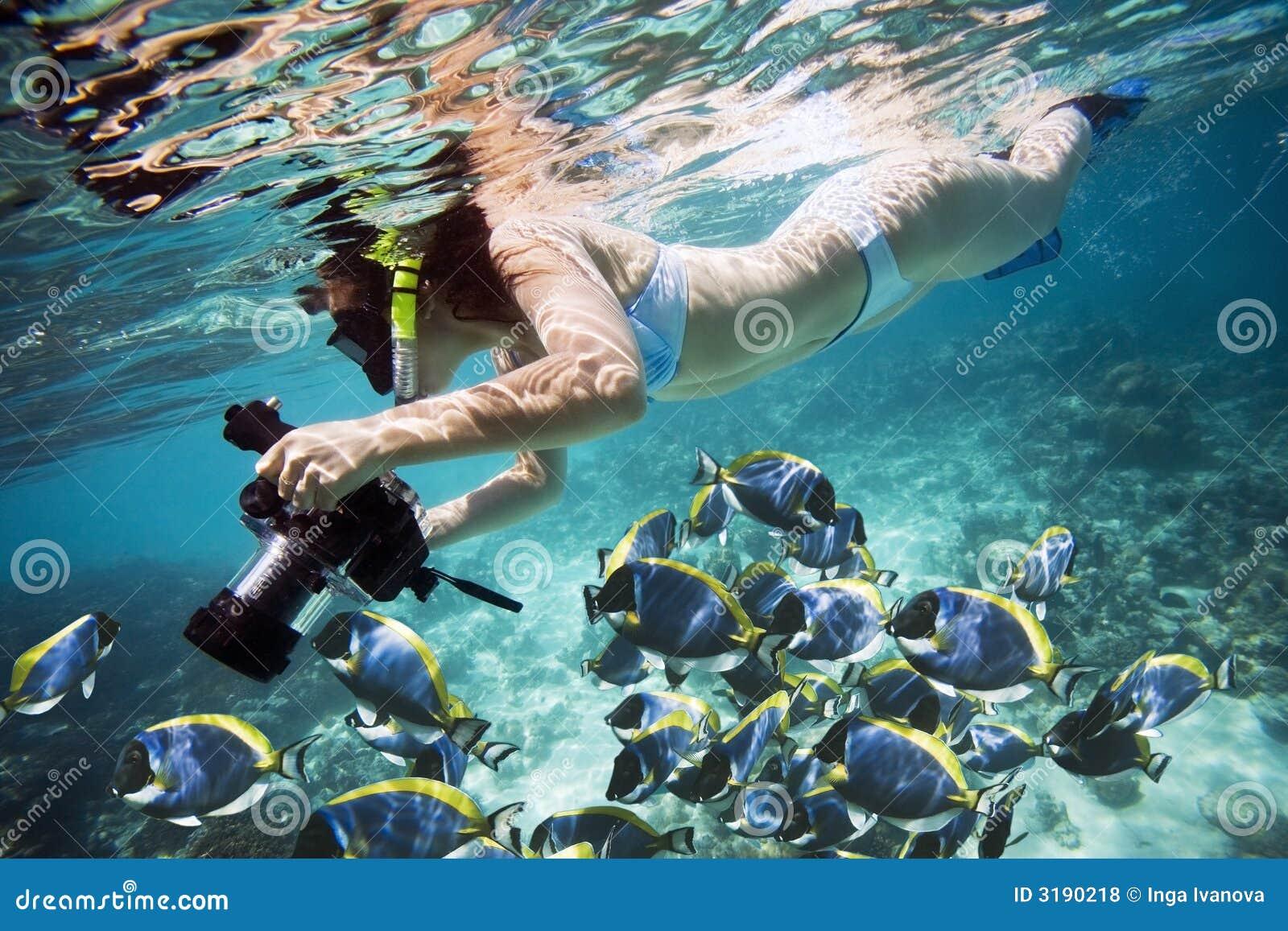 Vida subaquática