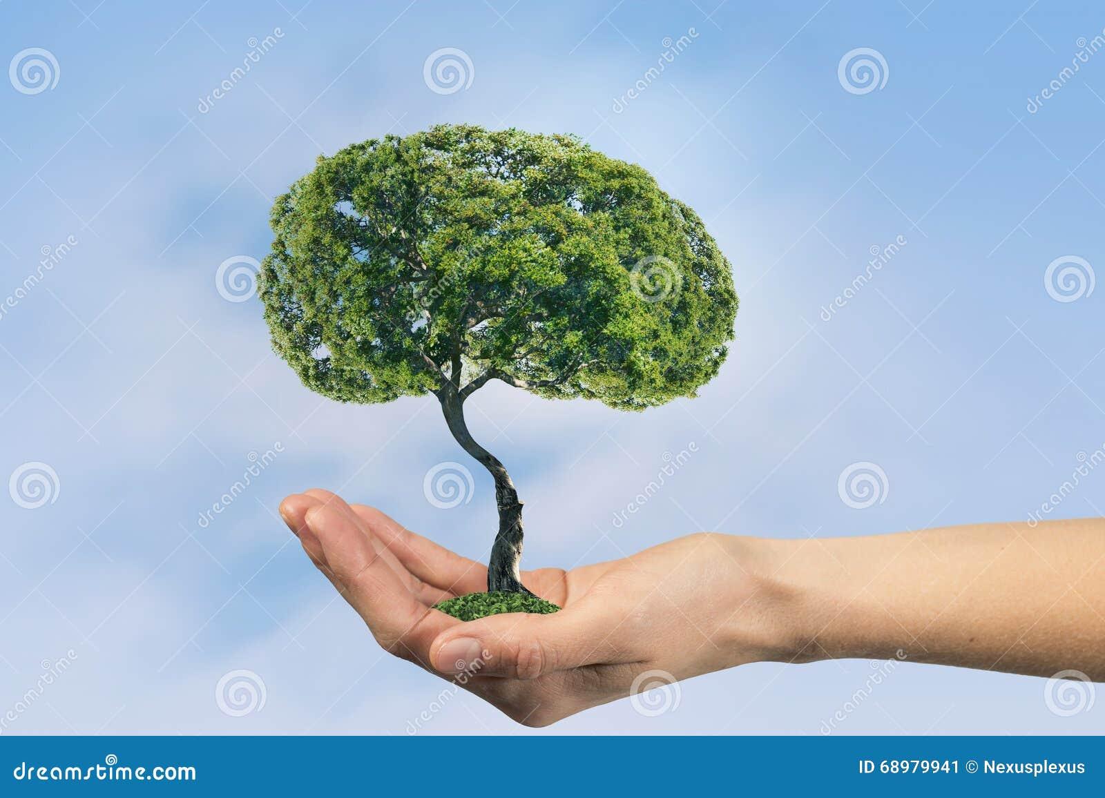 Vida verde del eco