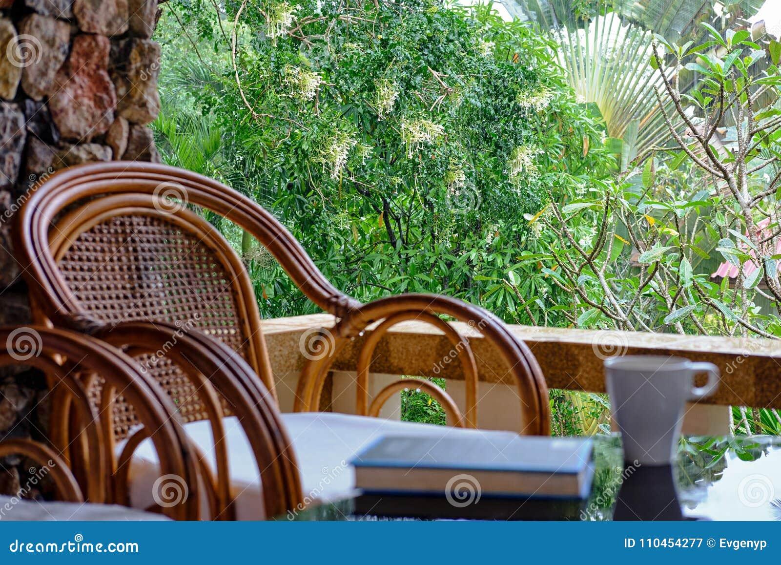Vide- stol på balkong, koppen kaffe och boken