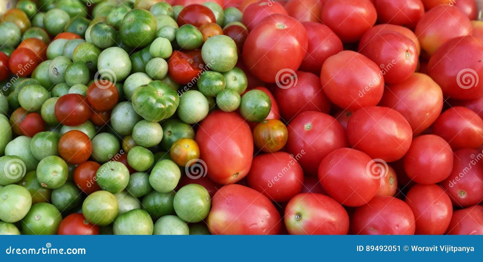 Videira do tomate