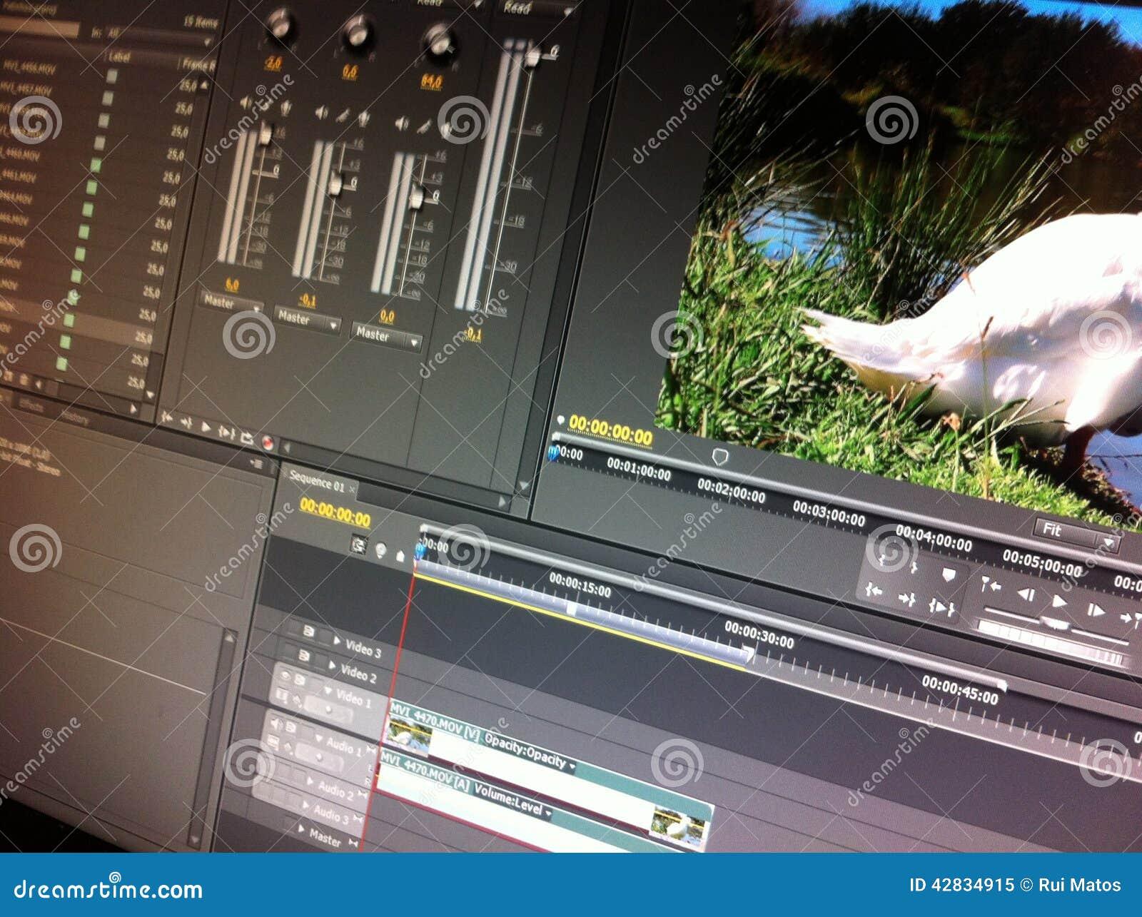 Videobearbeitungs-Software