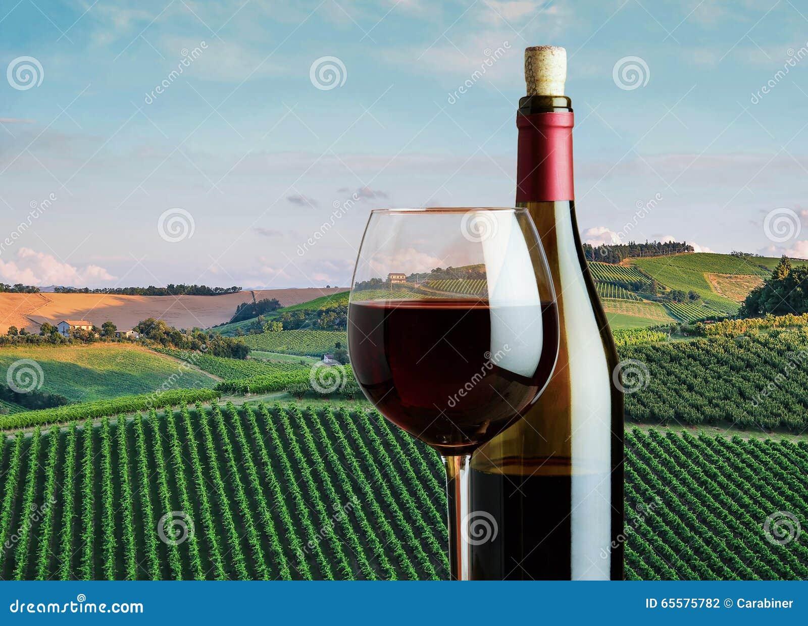 Vidro do vinho tinto com uma garrafa no fundo do l rural