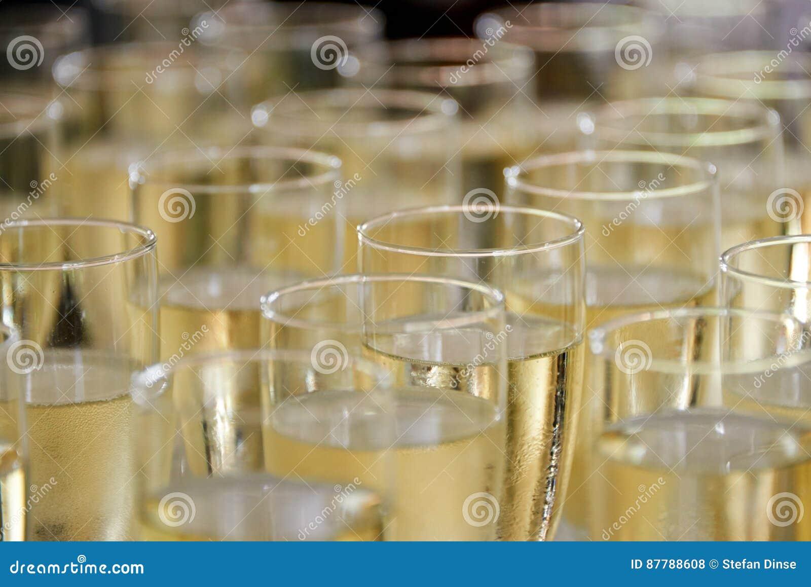 Vidros enchidos do champanhe