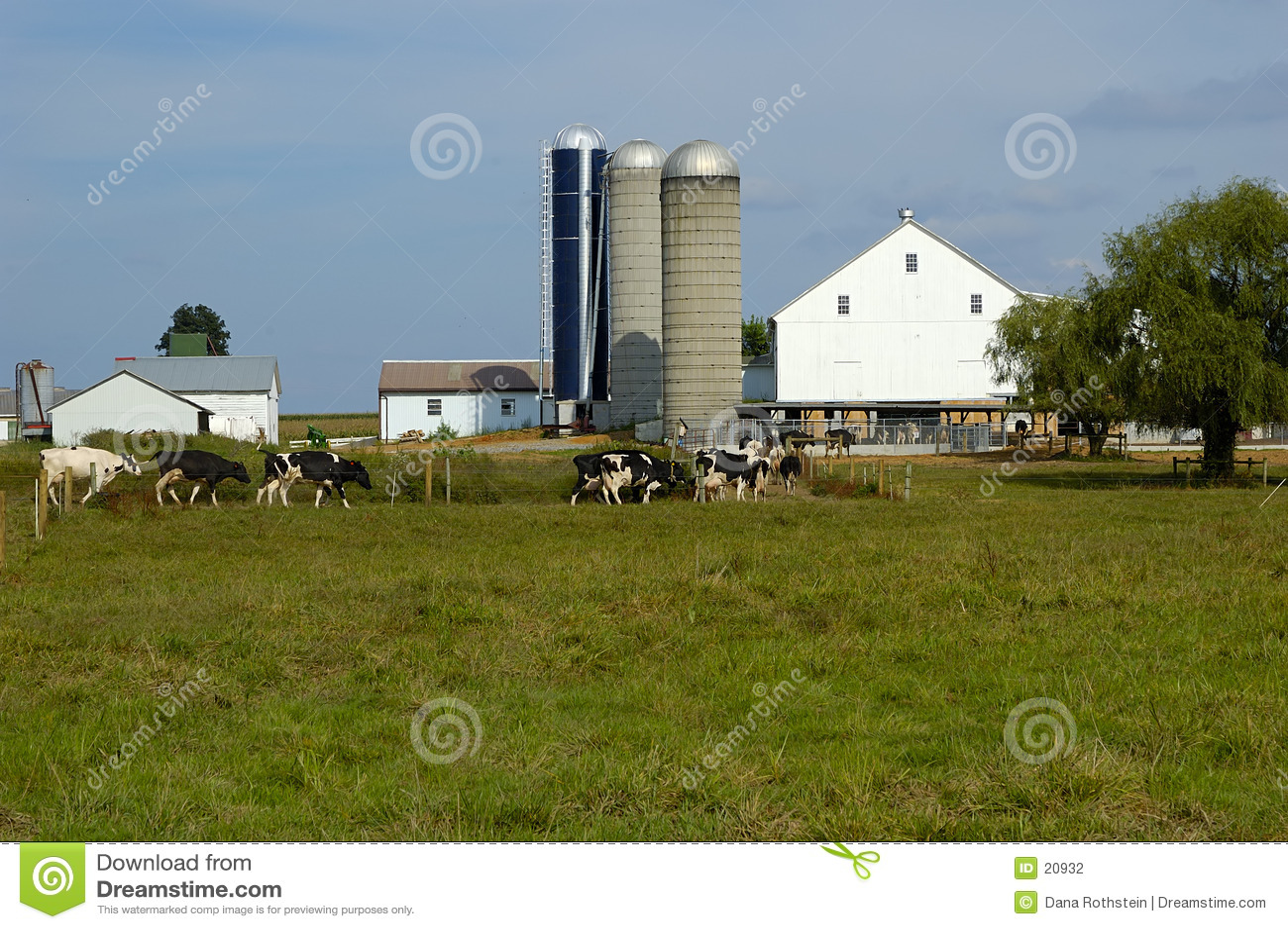 Vieh-Bauernhof